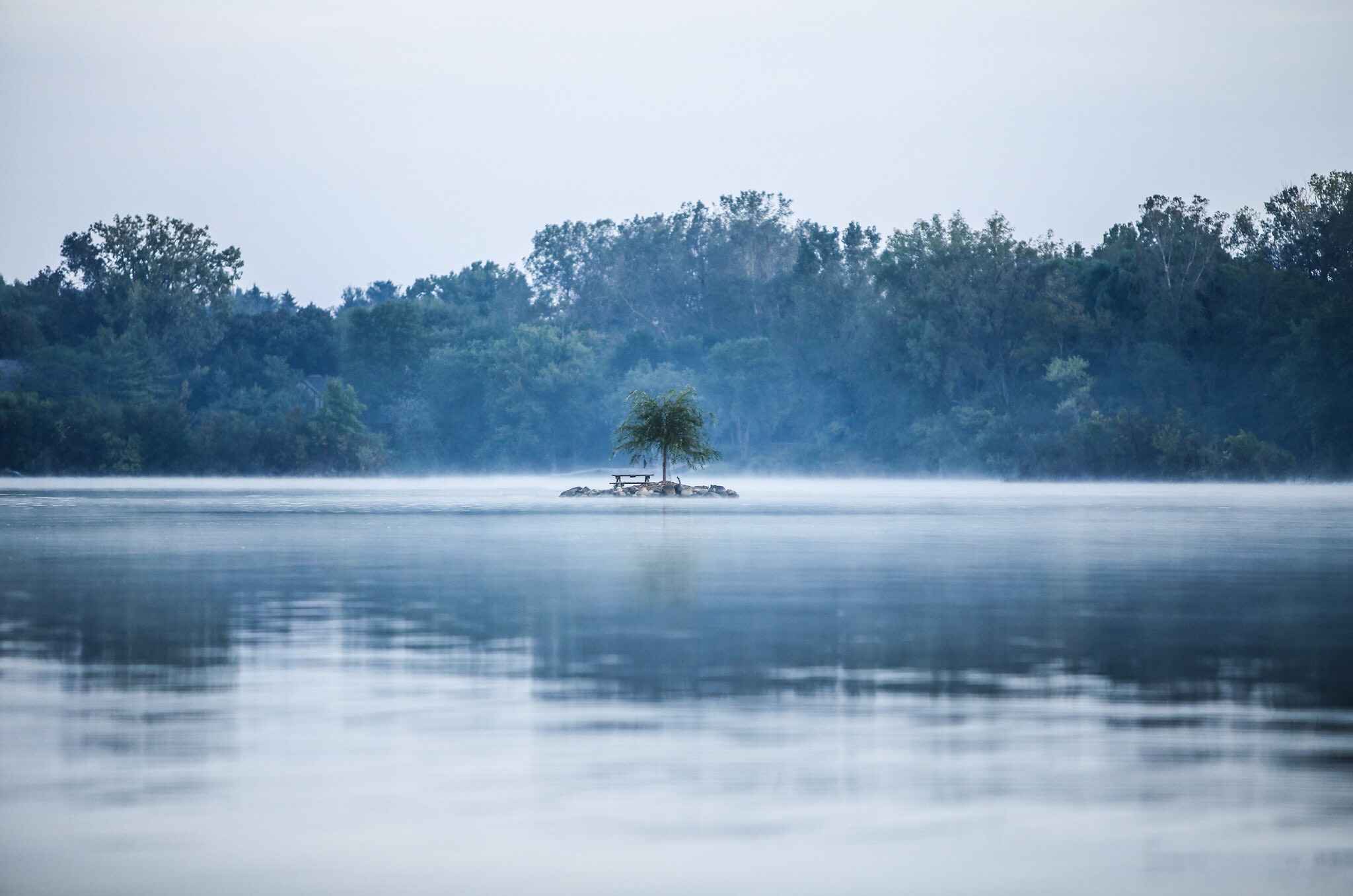 A small island with a bench and a tree in the middle of a misty lake