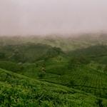 असम का सांस्कृतिक पर्यटन : अनुवाद और निर्वचन की वर्तमान स्थिति एवं समस्याएँ-उज्जवल डेका बरुआ