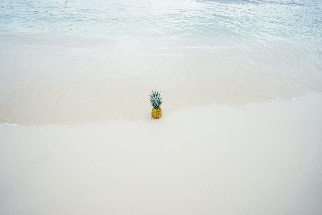 Pineapple at the Beach - 5th most popular pineapple photo