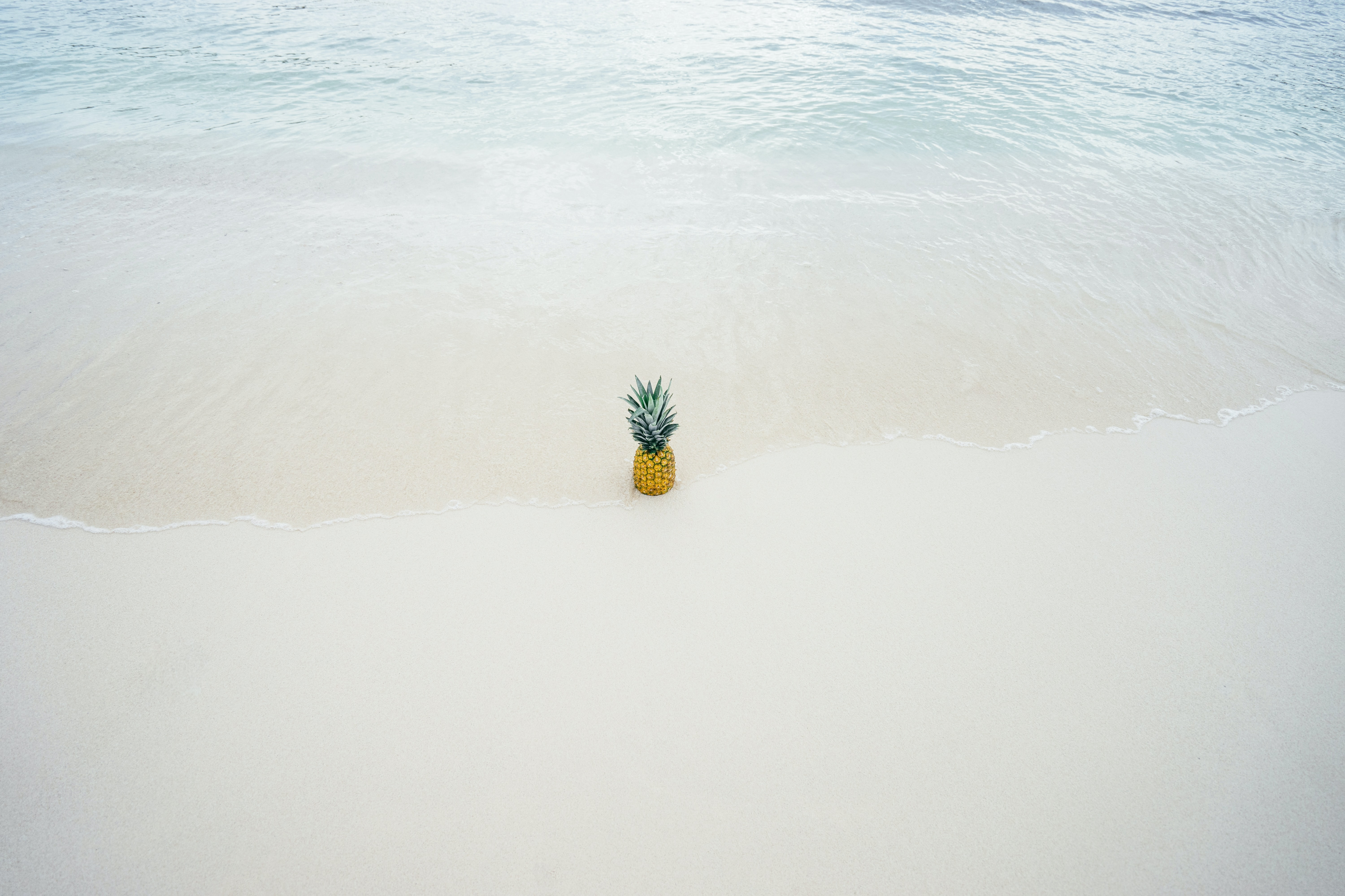 Ocean washing ashore with the pineapple in the beach sand
