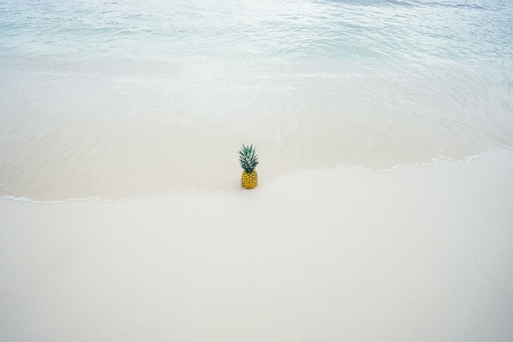 pineapple on white sand seashore