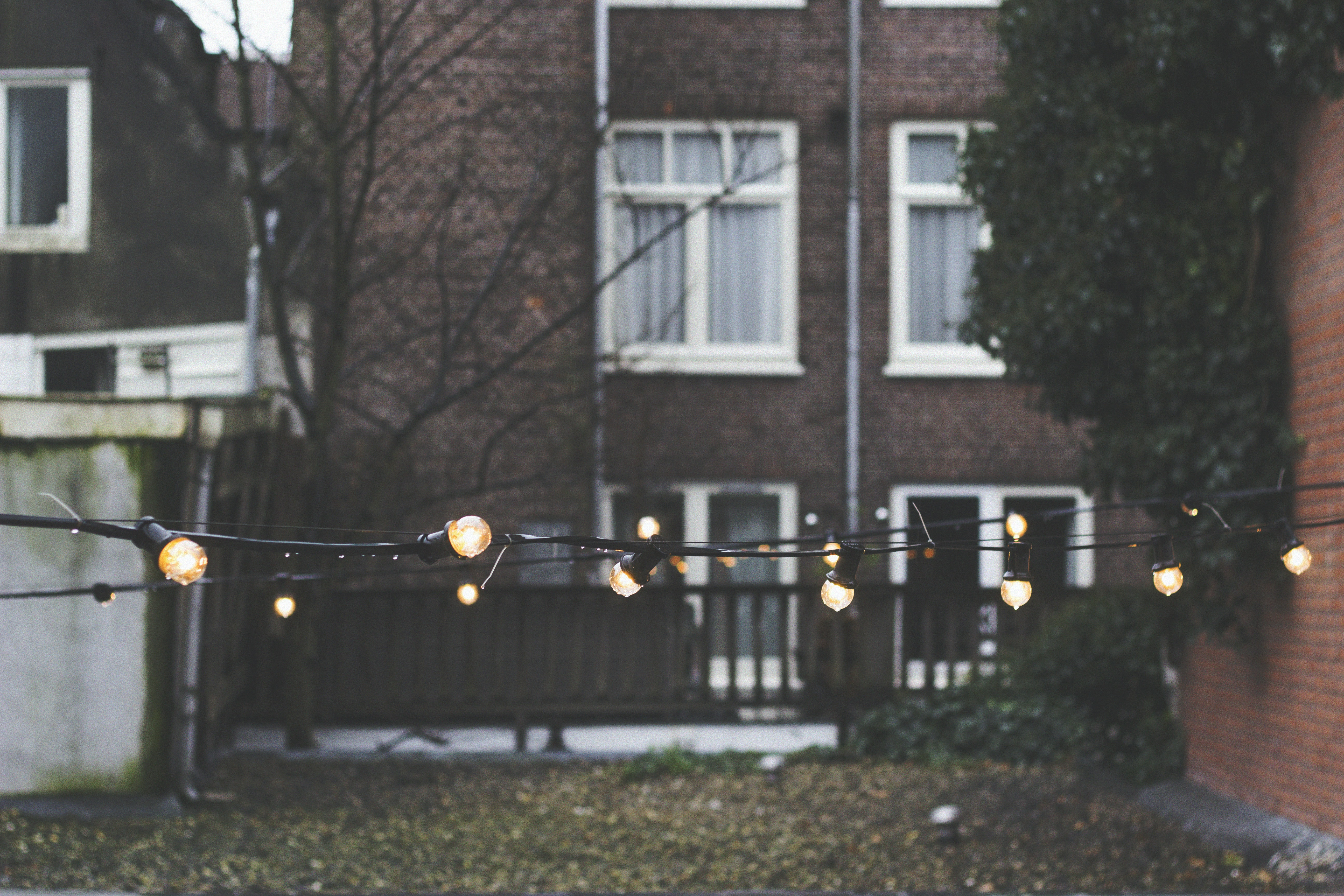 String lights in the back of an urban yard with a brick house and fences in the background