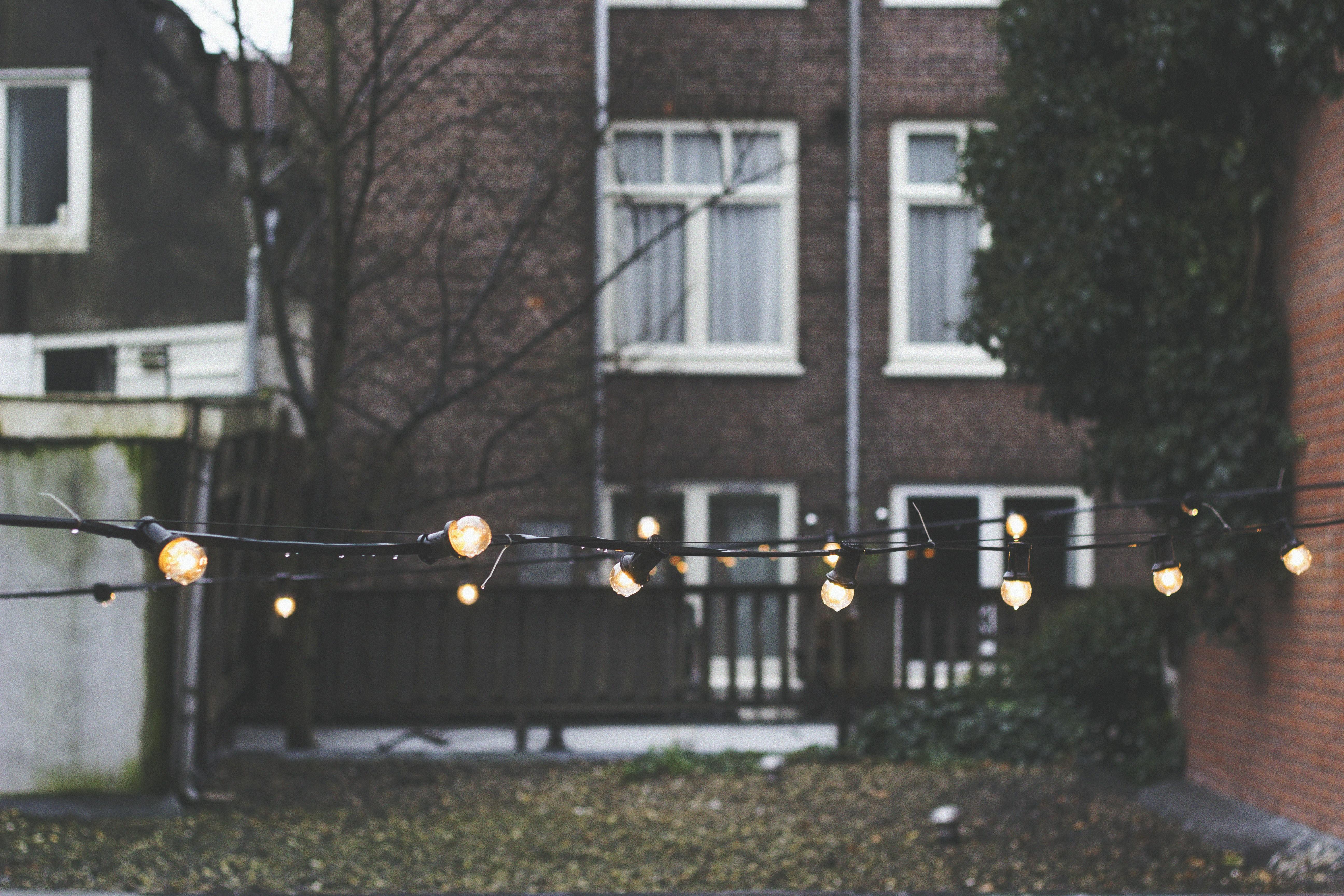 lighted bulbs at daytime