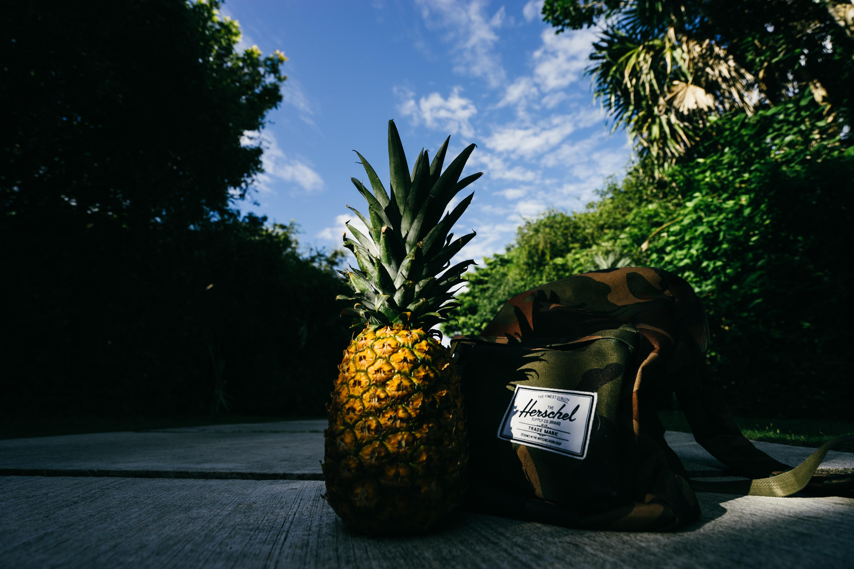 pineapple fruit beside Herschel crossbody bag on gray concrete road