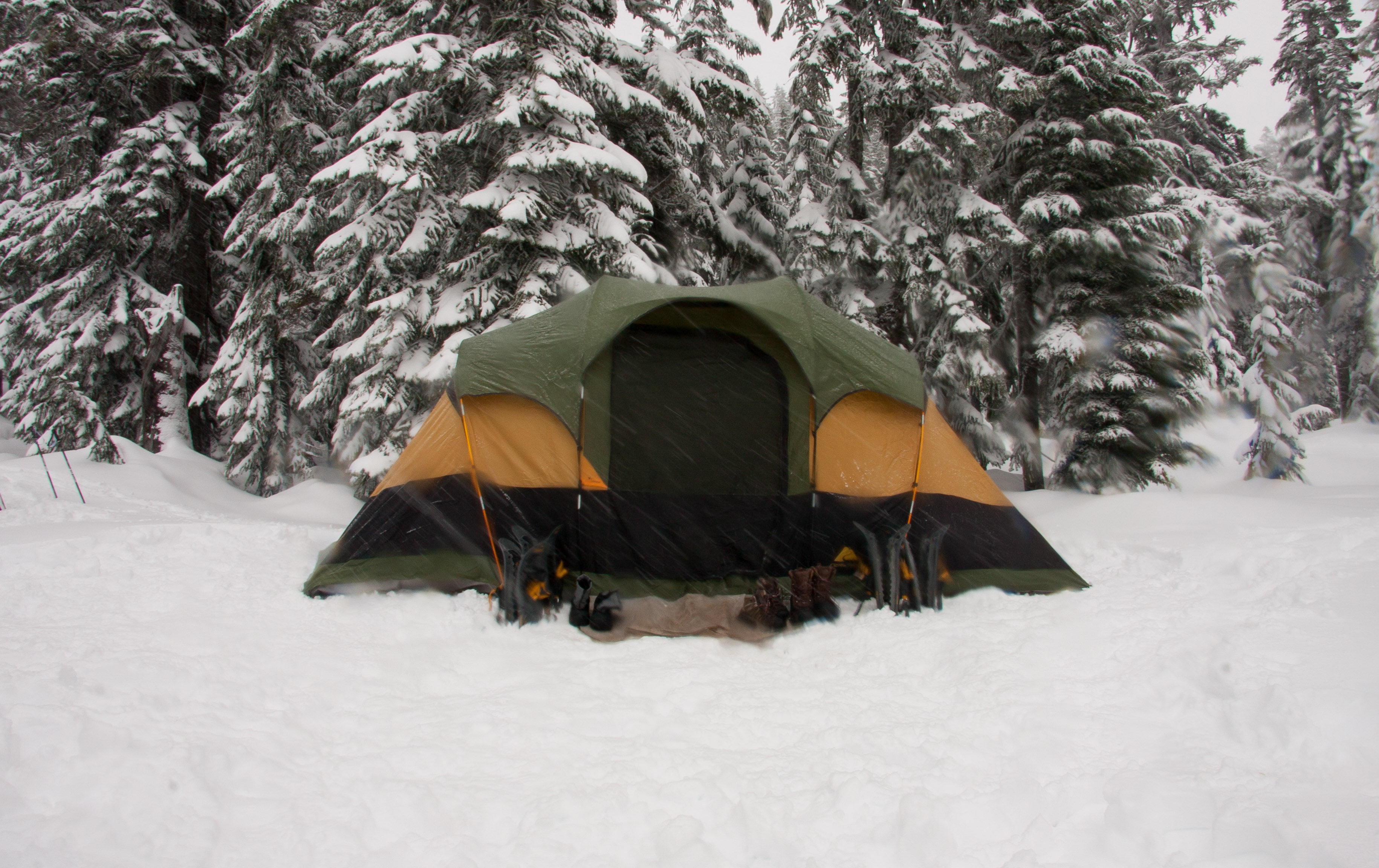 A green and orange tent for camping in the snow at Stevens Pass, Washington