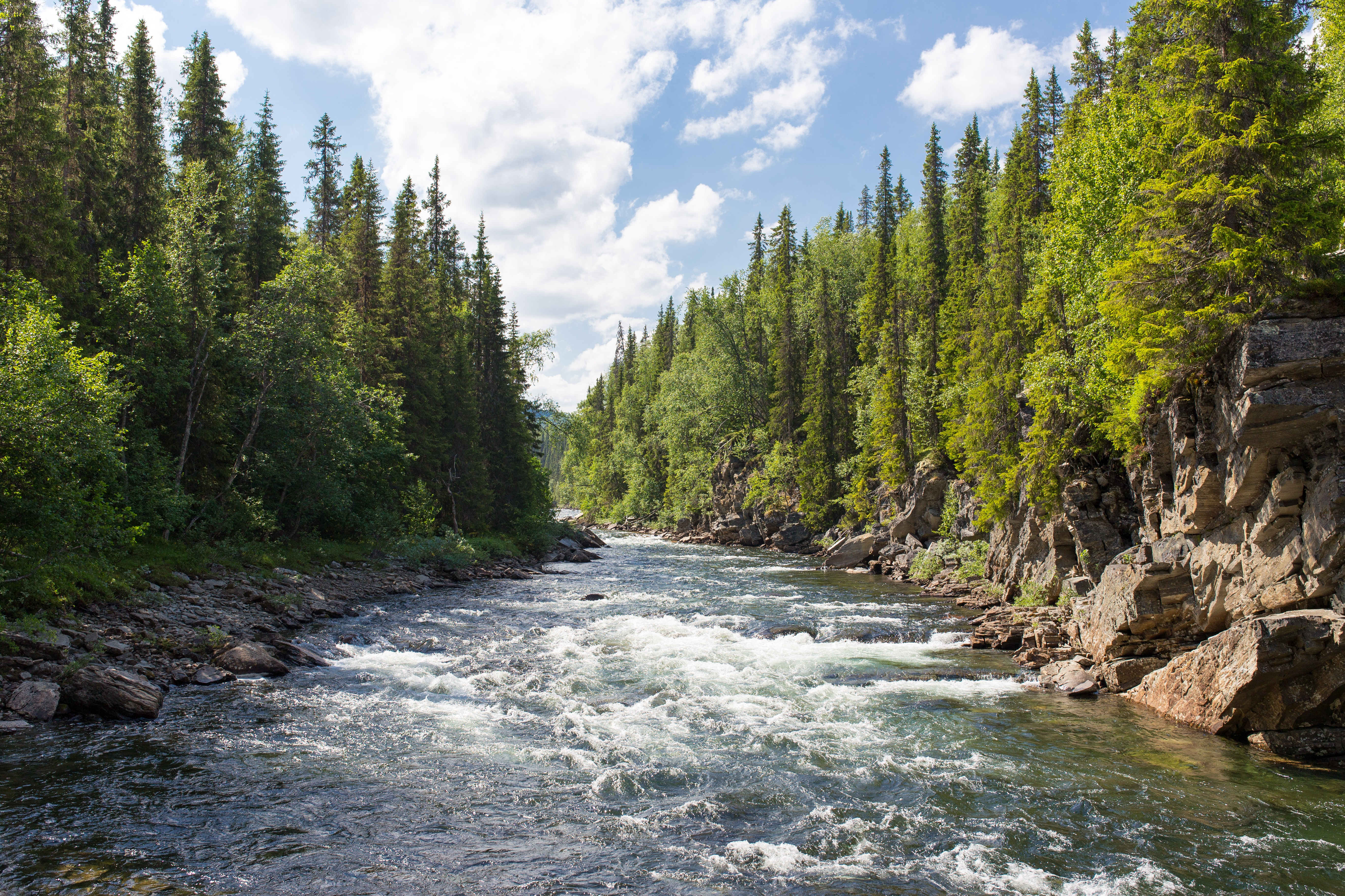 20+ River Pictures | Download ...