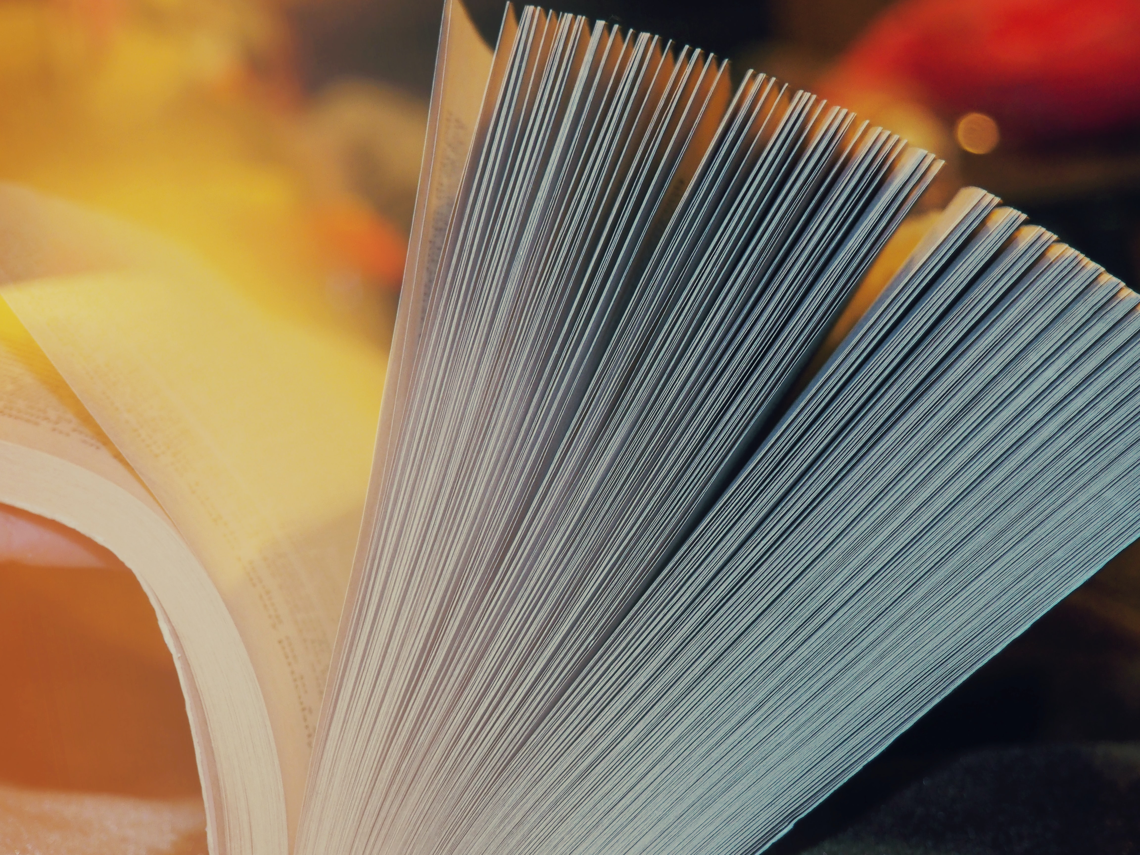 close-up photography of book page opening