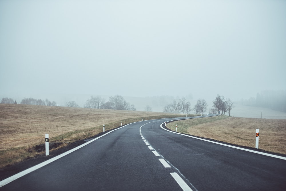 photo of concrete road and bare trees with covered with fogs under gray sky