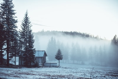 A house in winter fog