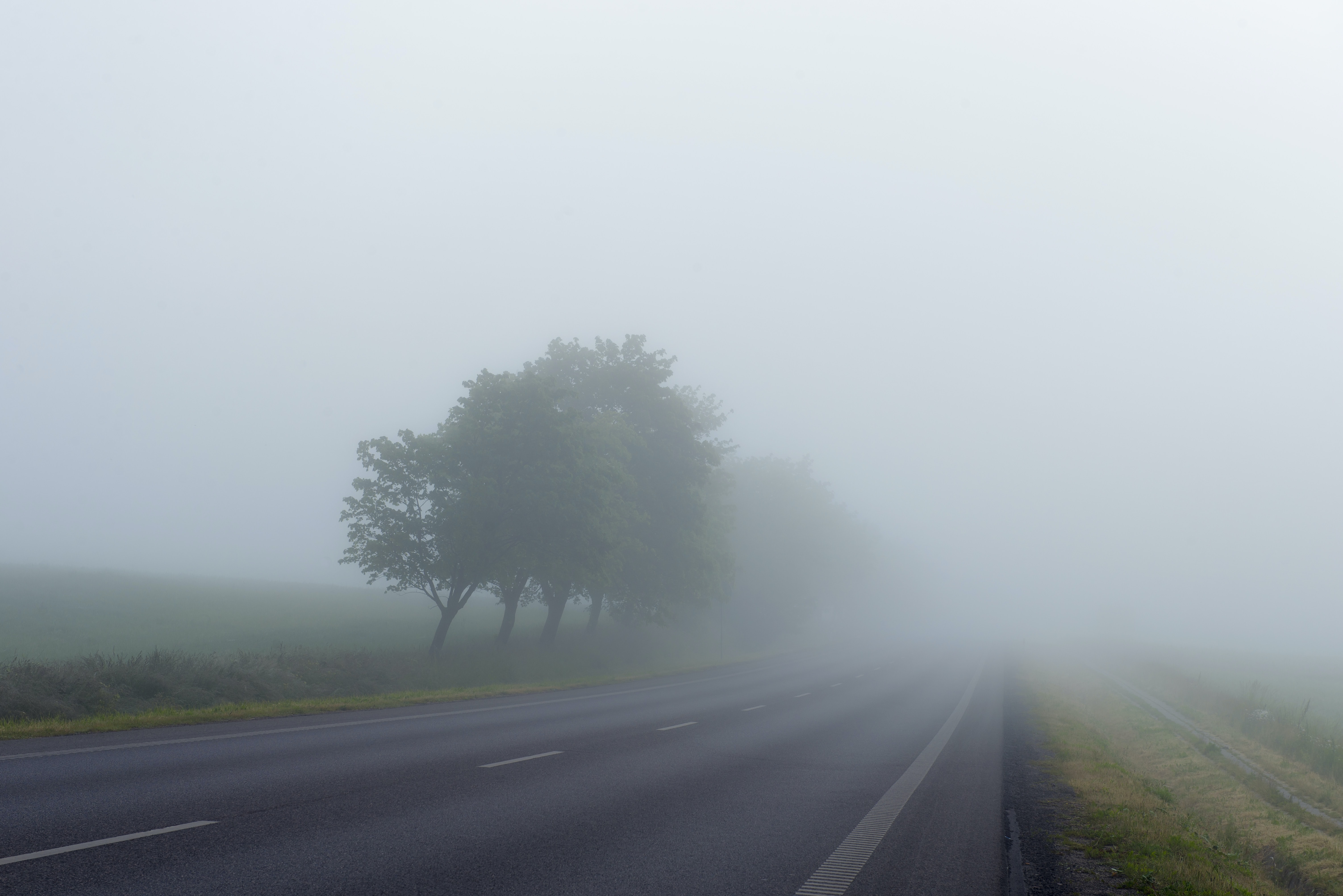 landscape photography of freeway surrounded with fogs