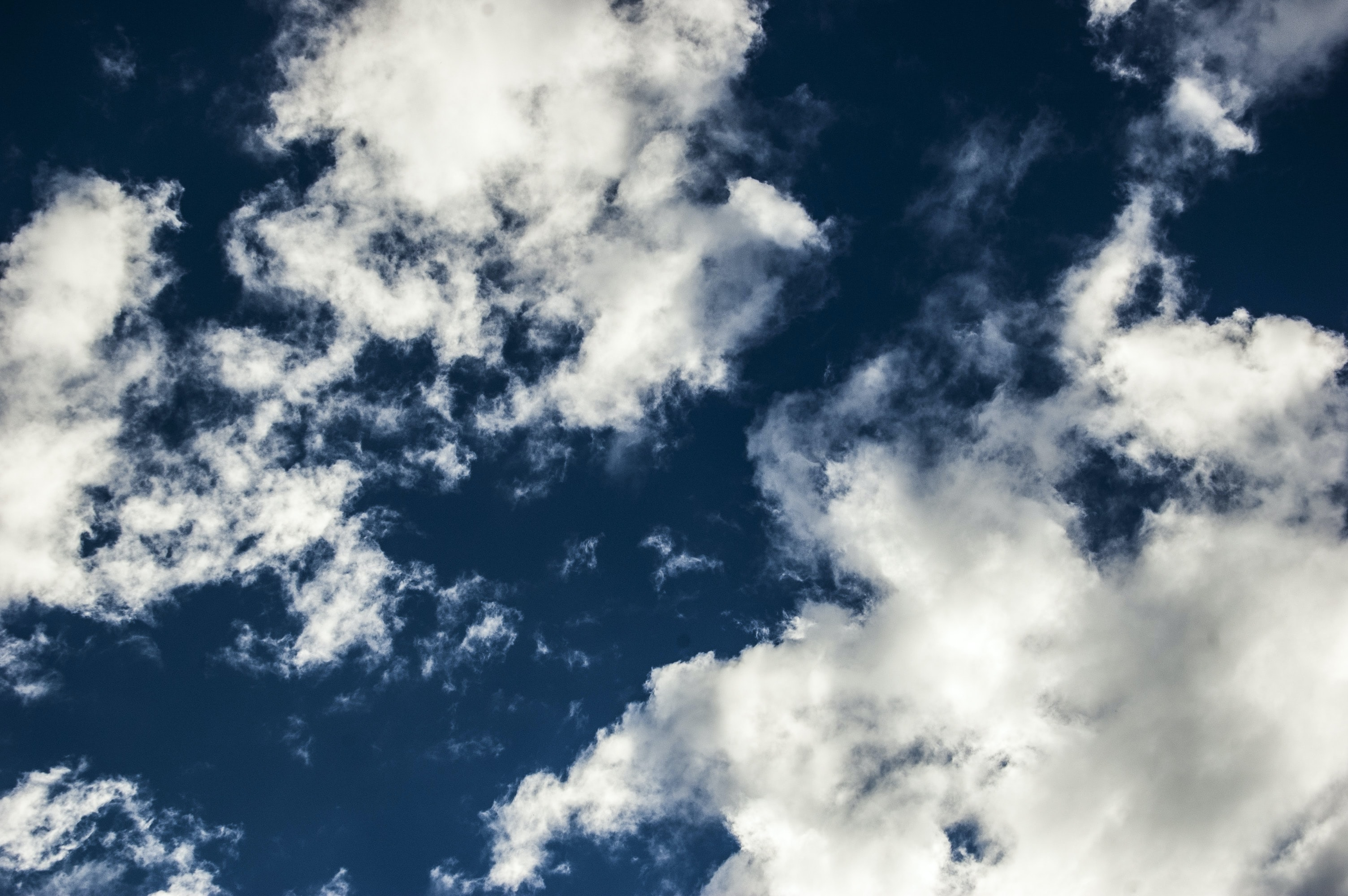 low angle photography of blue sky