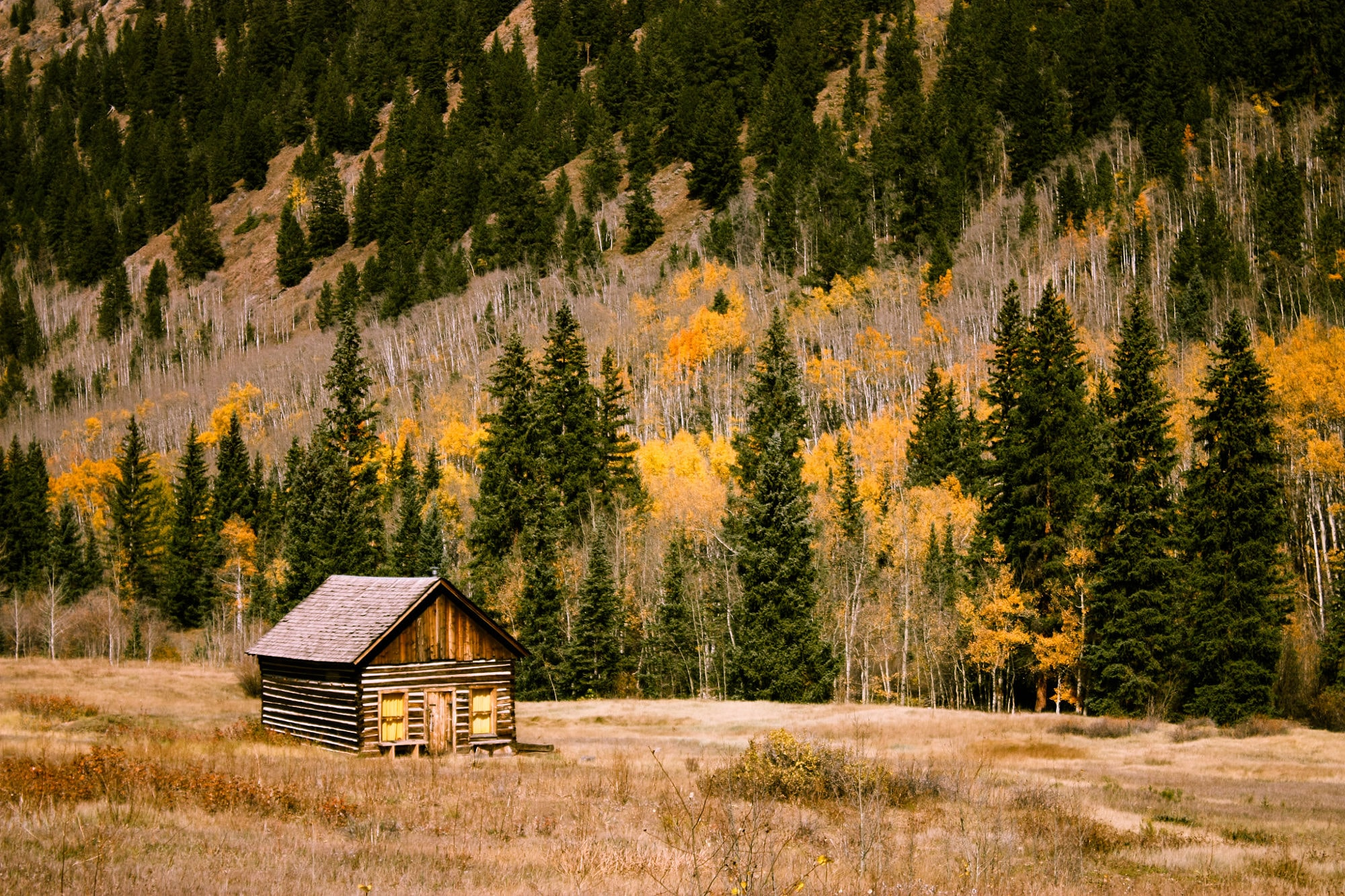 A lone log cabin at the foot of a wooded mountain