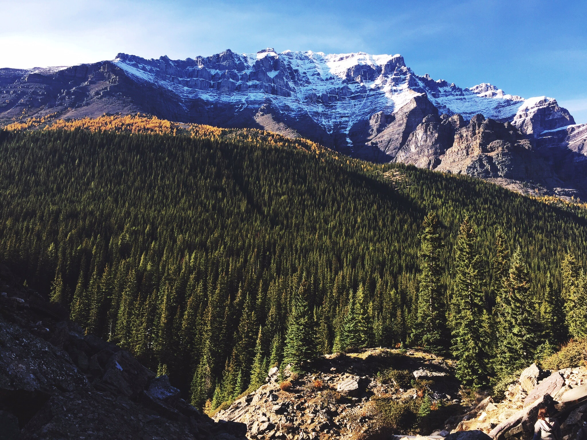 Moraine Lake in Alberta, Canada against a forest of trees and snow capped mountains