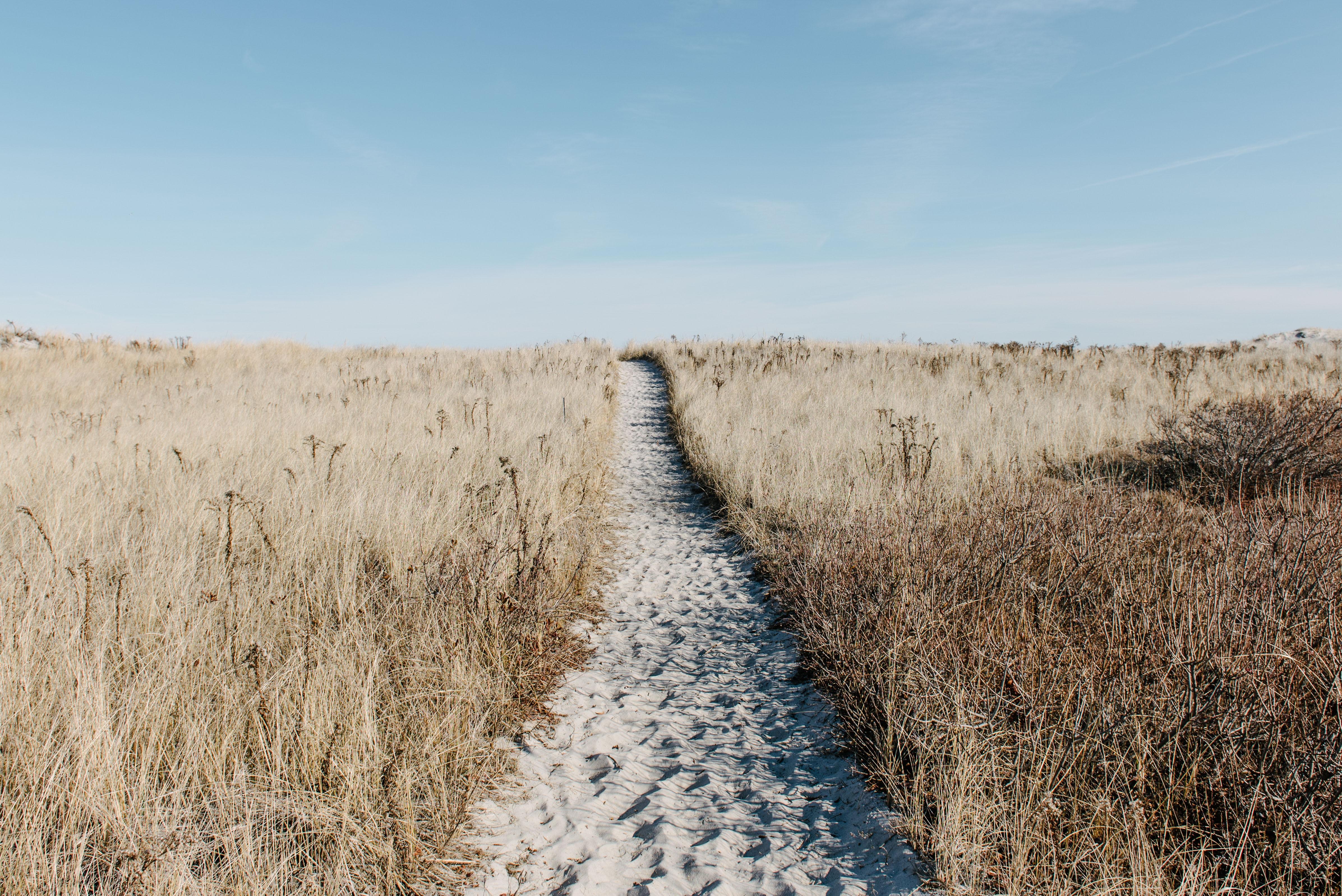 Sand path with footprints through the grass field at Crane Beach