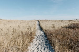 Les 6 étapes clefs pour reprendre une entreprise