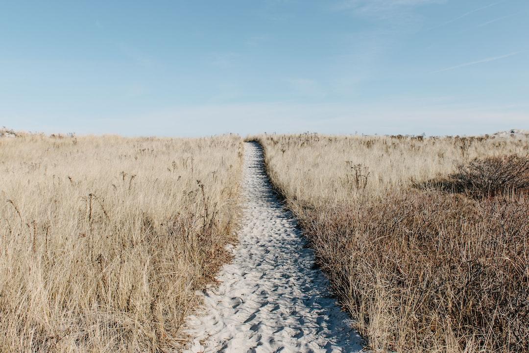 Sand path through grass field