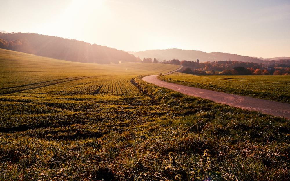 green grass field near way during daytime