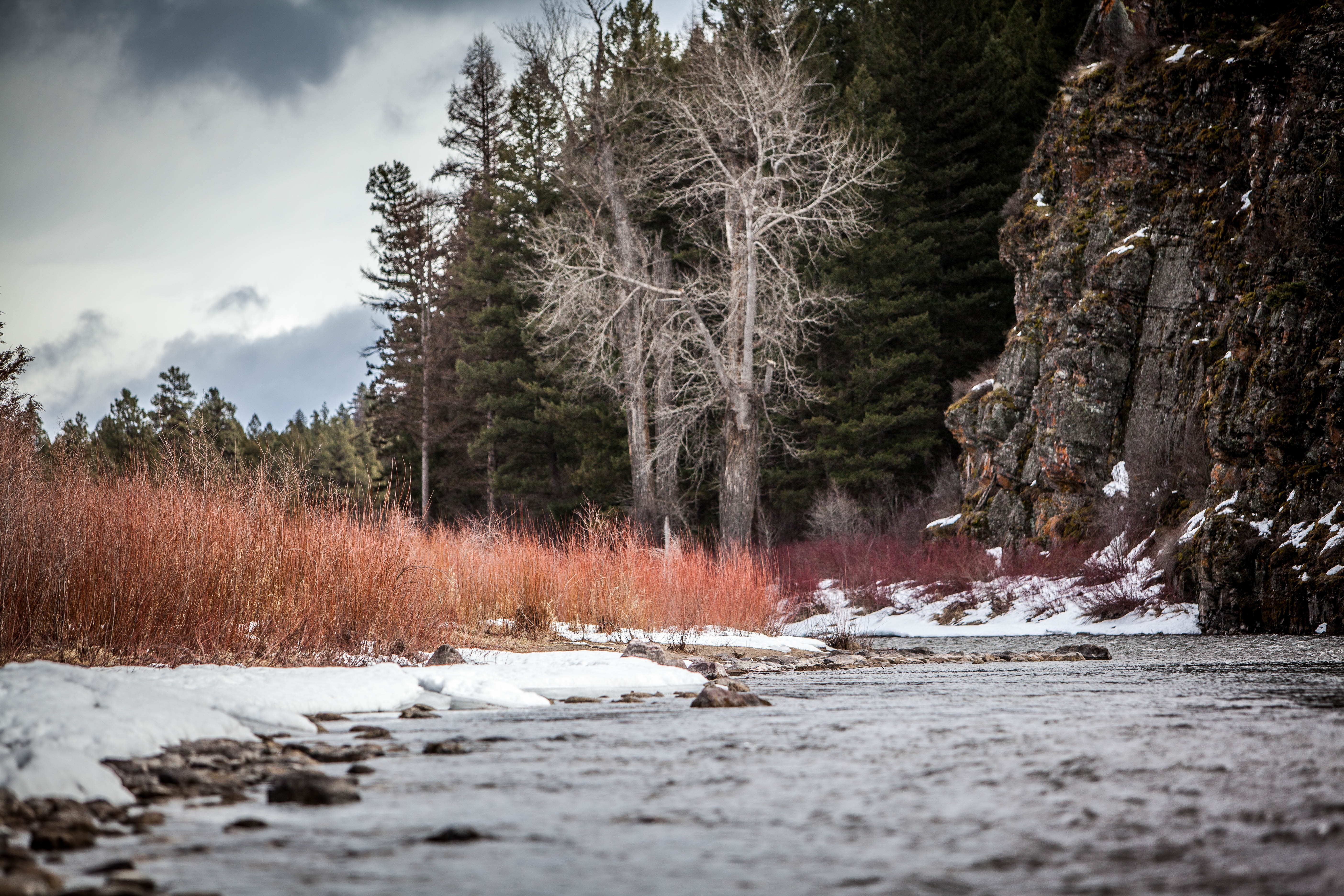 A stream flowing next to tall orange grass and snow near a mountain