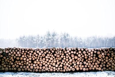 firewood lot log home zoom background