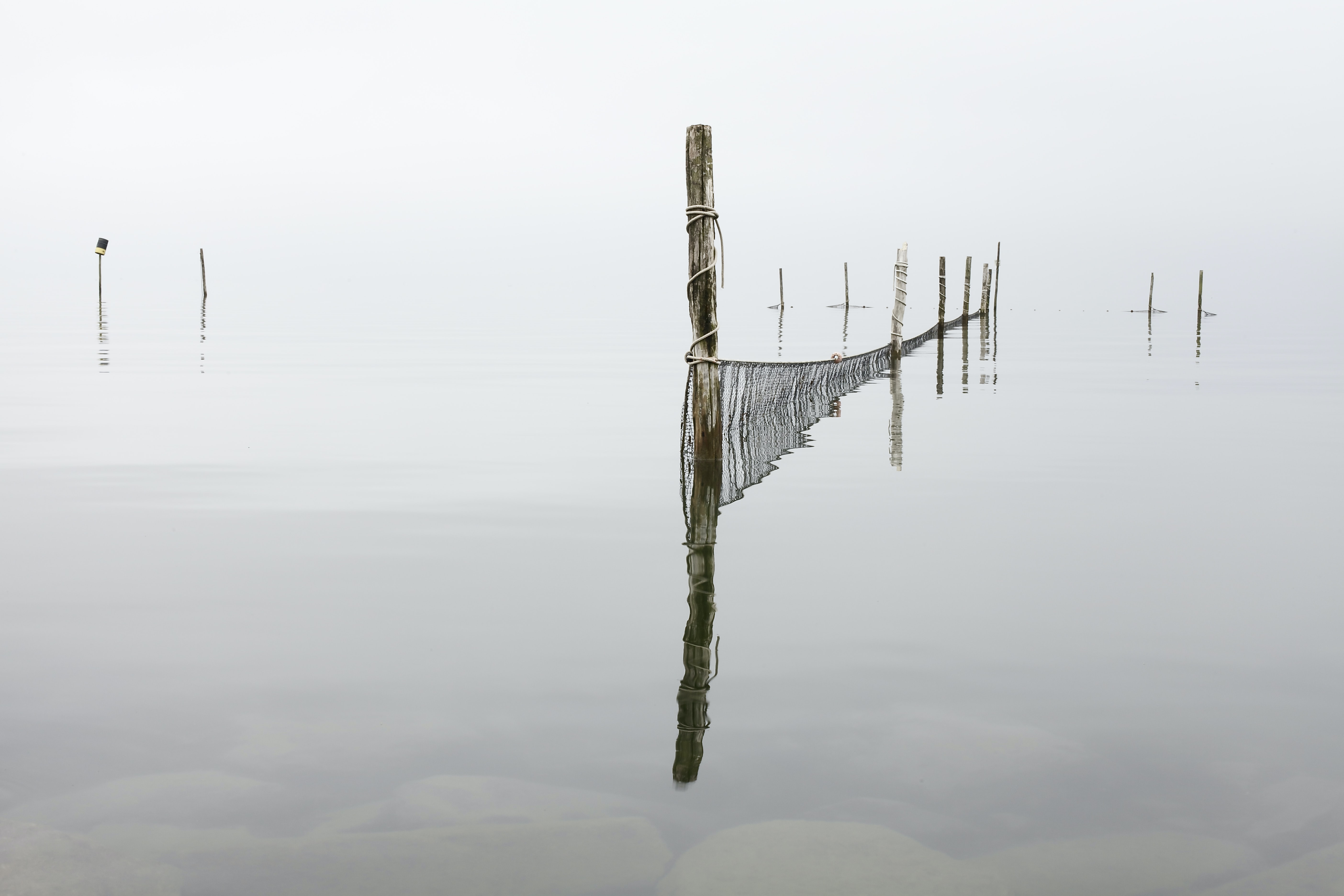 Reflections of wooden posts in clear waters on a cloudy day