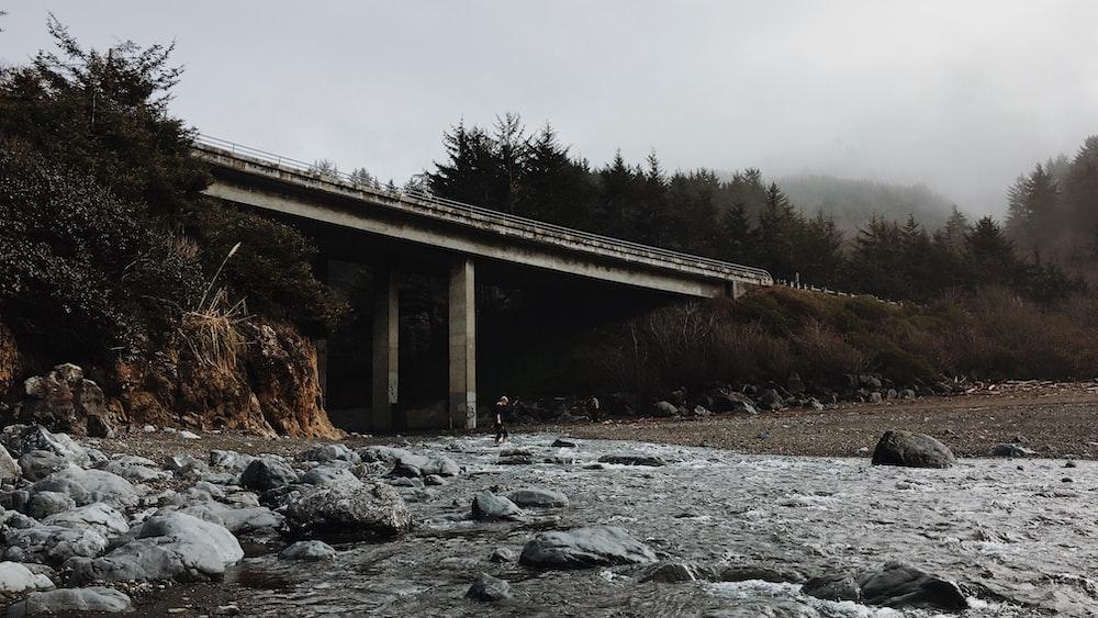 gray concrete bridge near trees at daytime