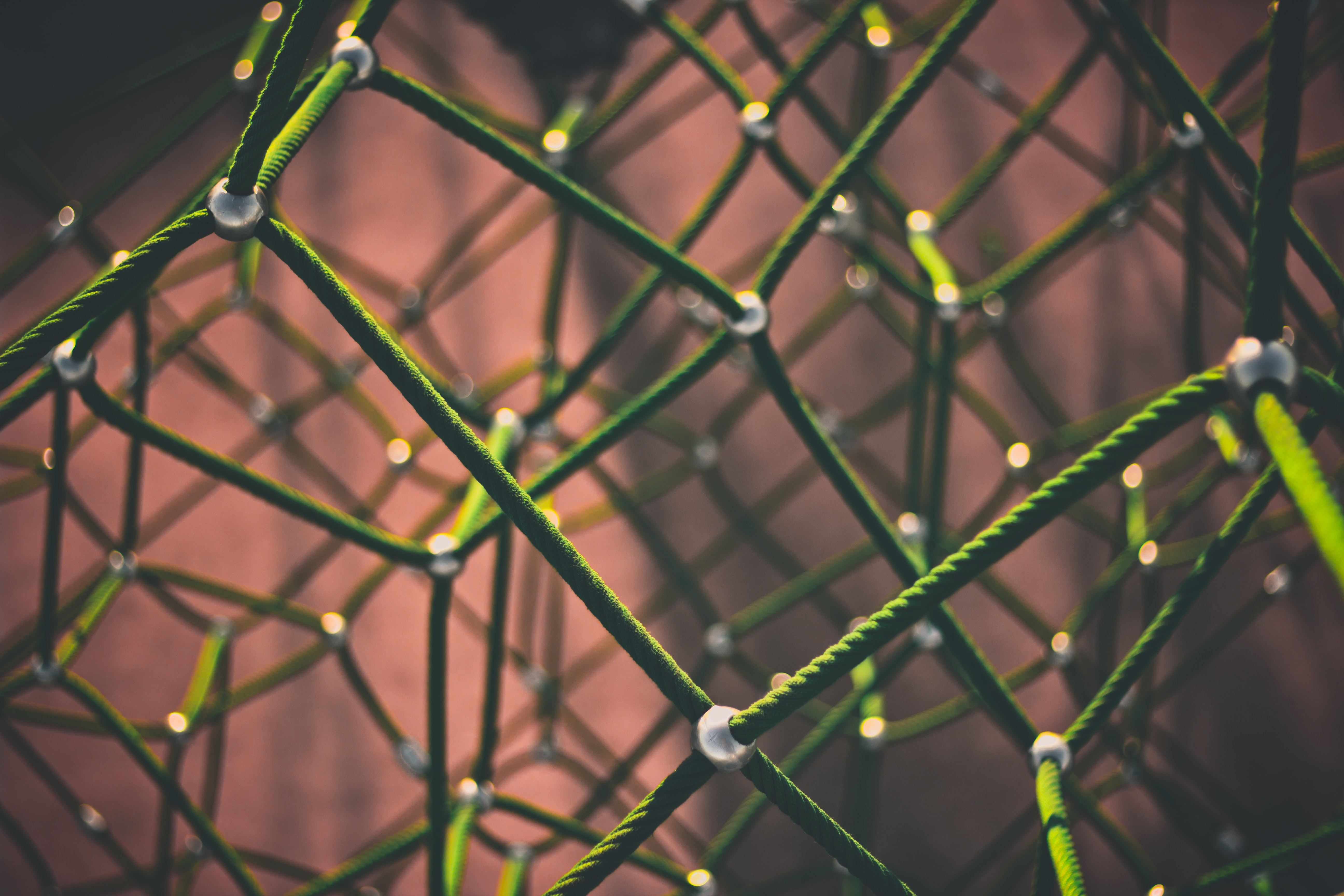 A meshwork of green ropes against a red background