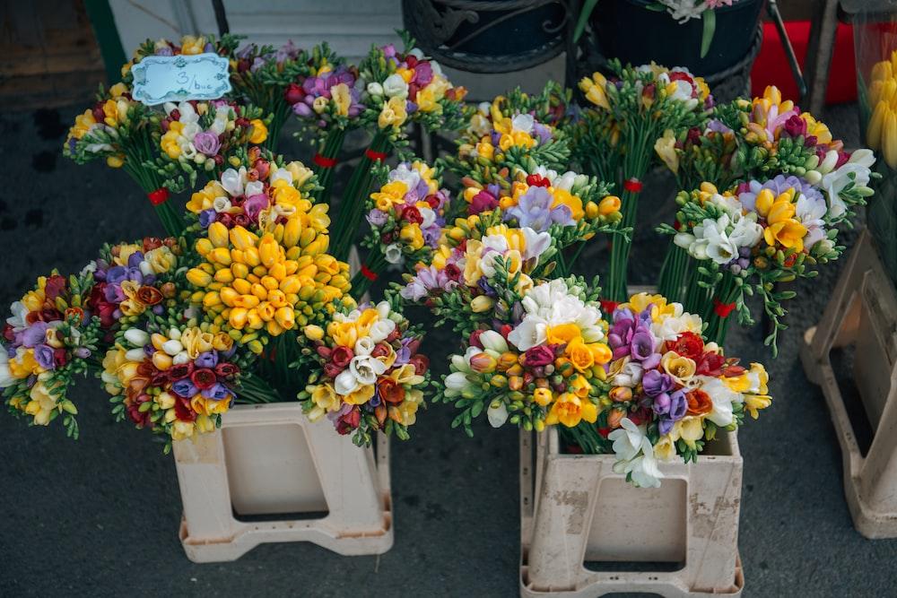flowers on white plant pots