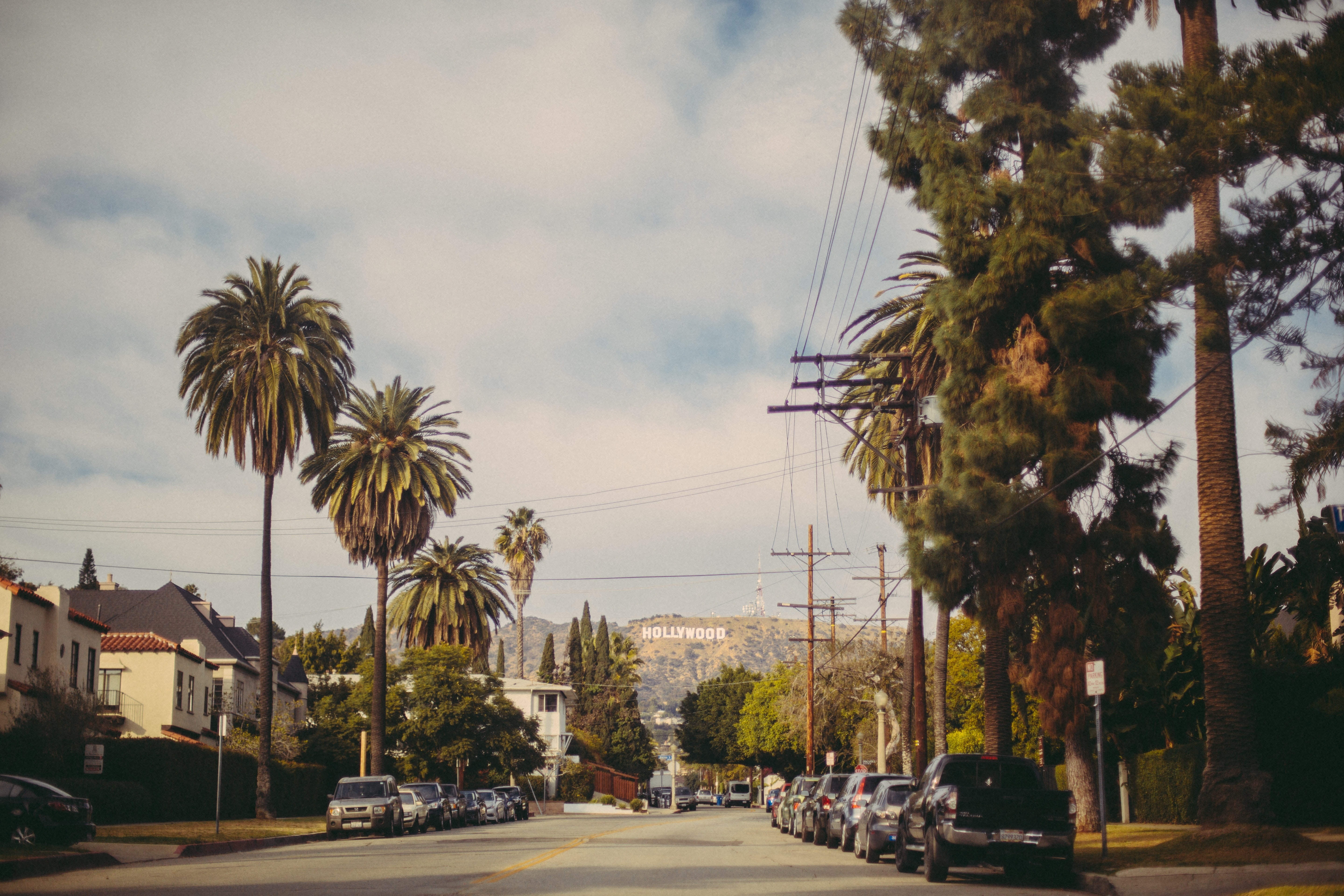 A street in Beverly Hills that's lined with palm trees and has a view of the Hollywood sign