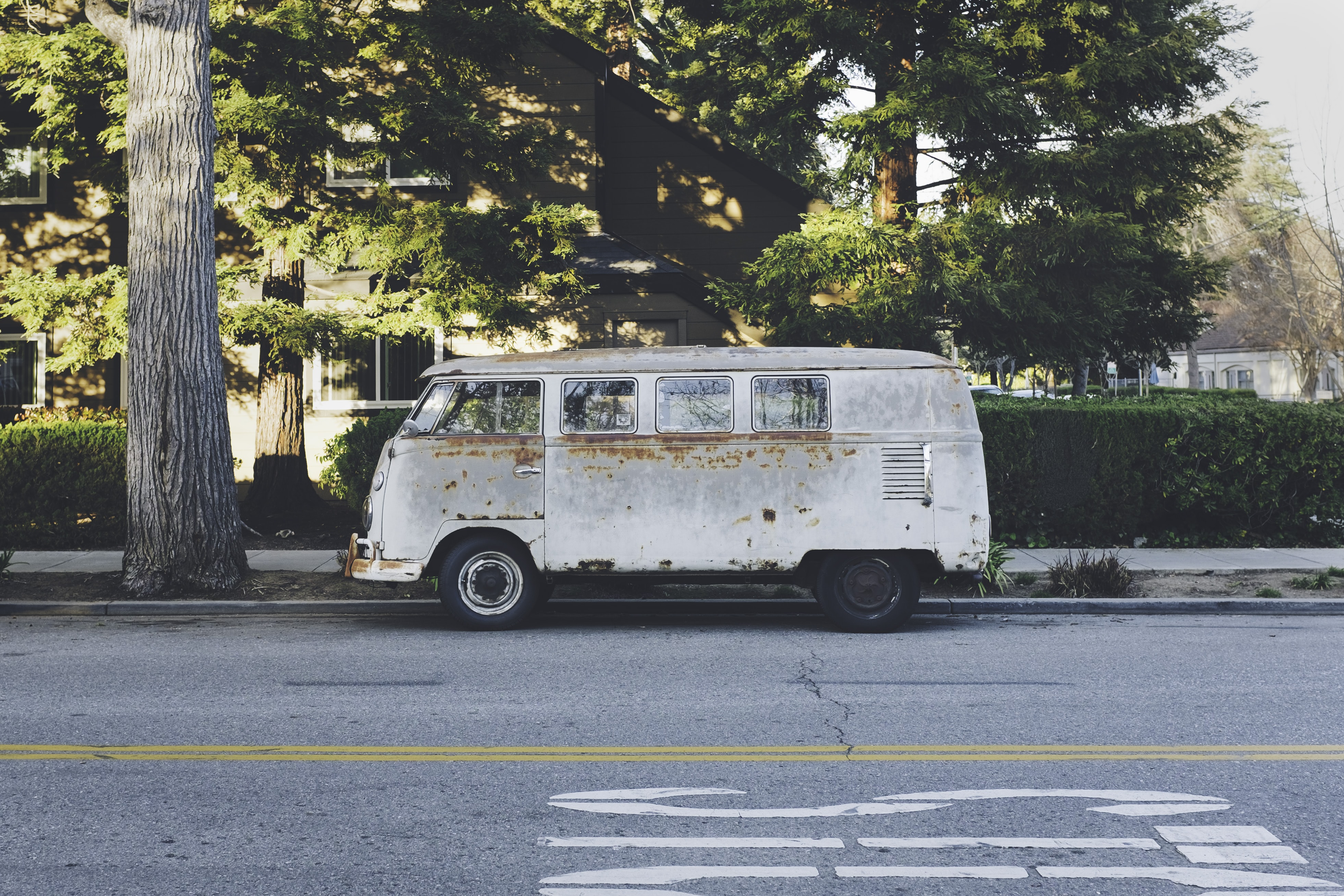 A white, rusty vintage Volkswagen bus parked on the side of a street by a large tree
