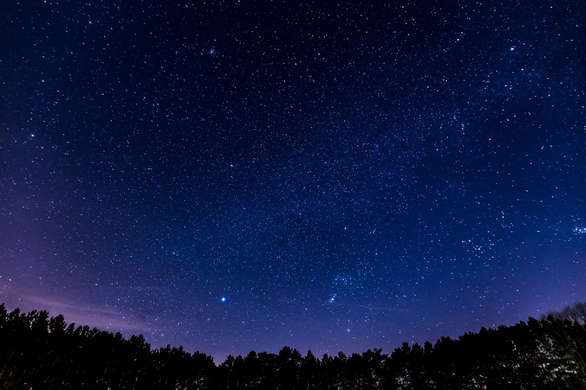 Panoramic view of the night sky full of stars above the silhouette of the forest.