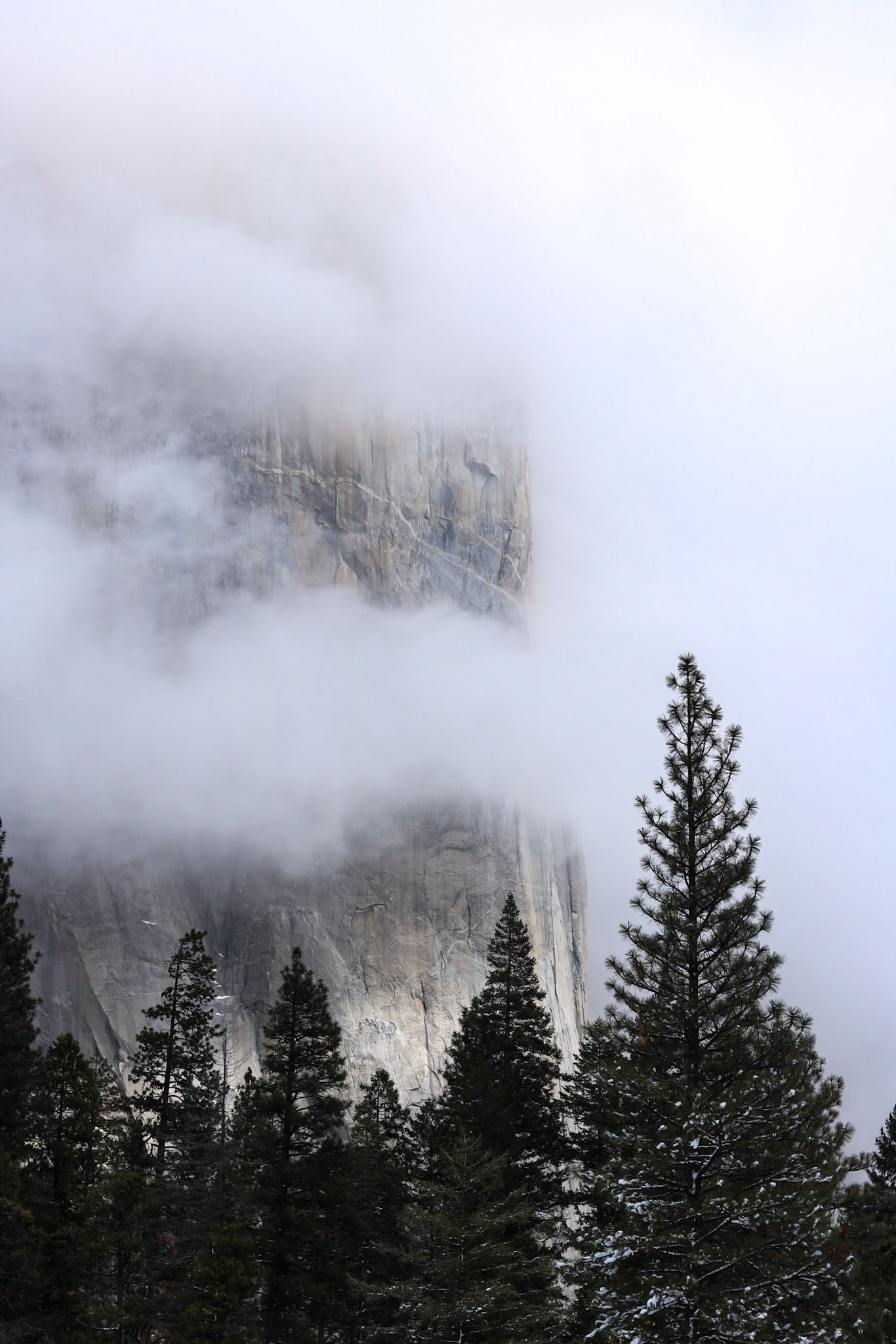A steep cliff shrouded in fog in Yosemite