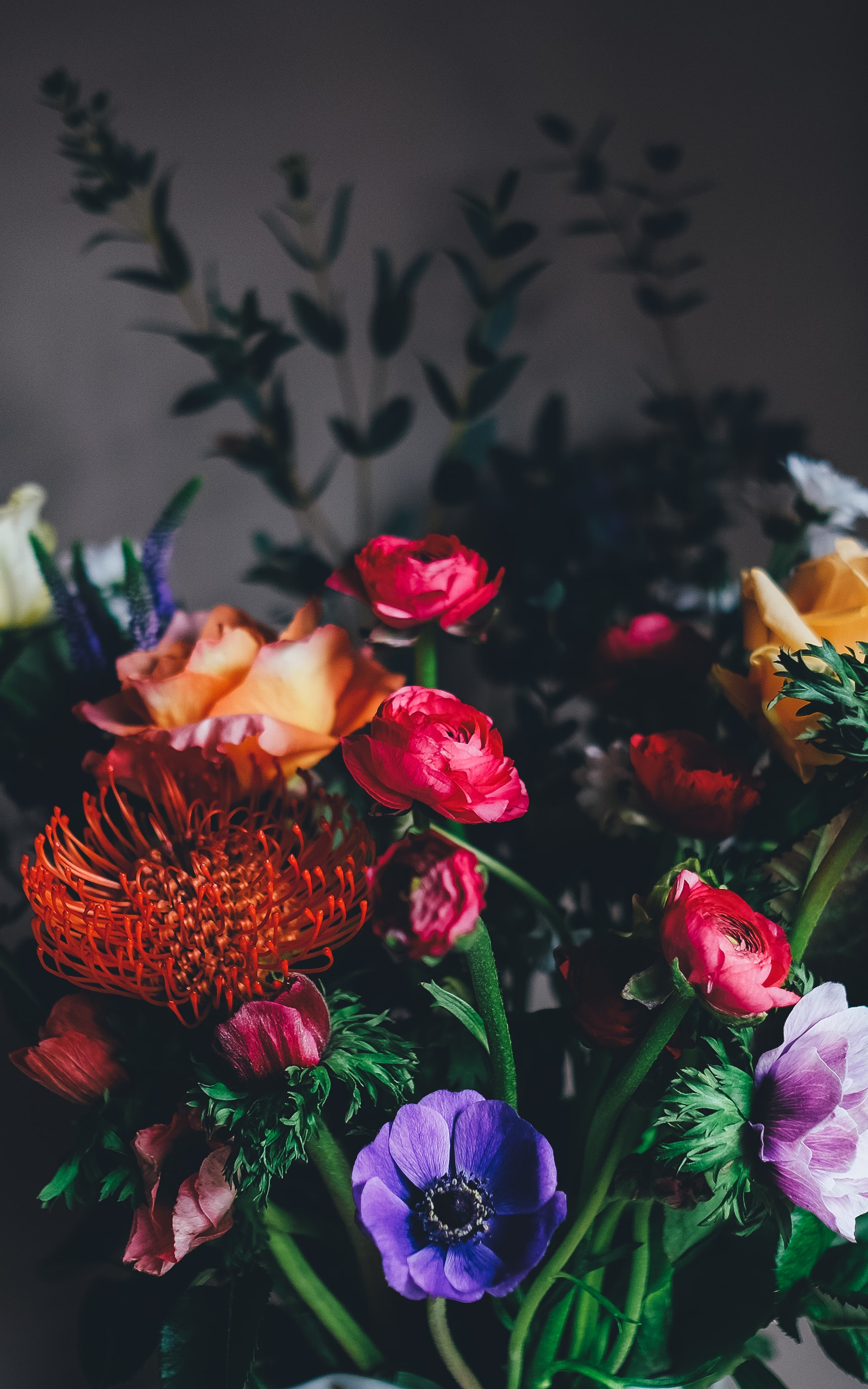 A Collection Of Magnificent Flowers Of Various Colors And Types