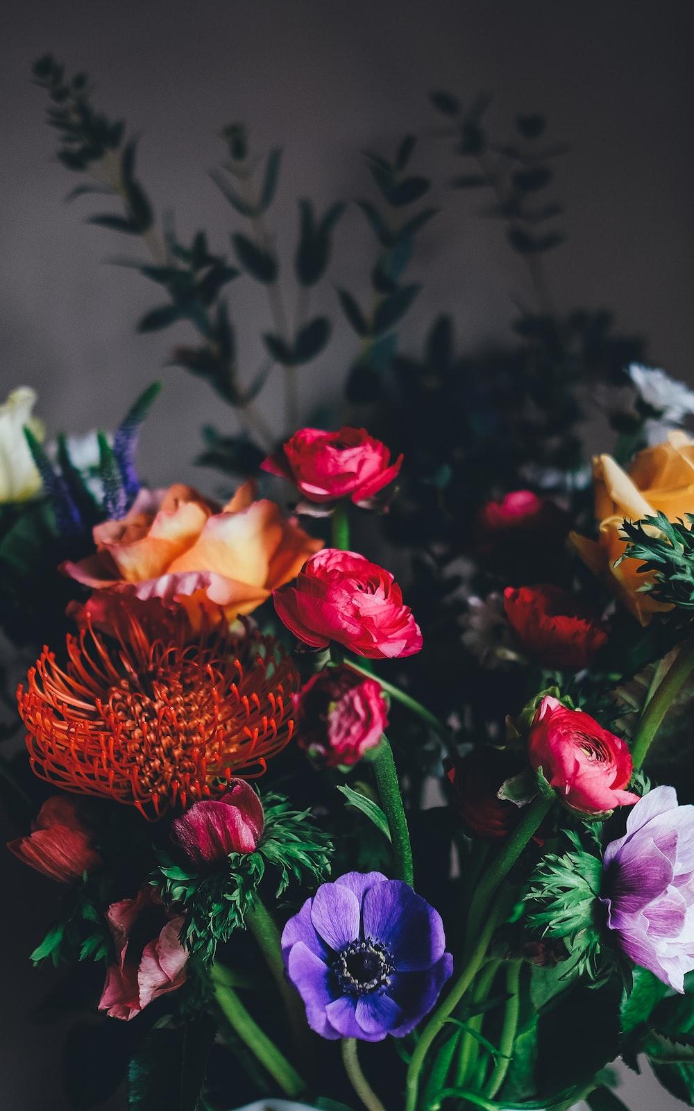 assorted petaled flowers centerpiece inside room
