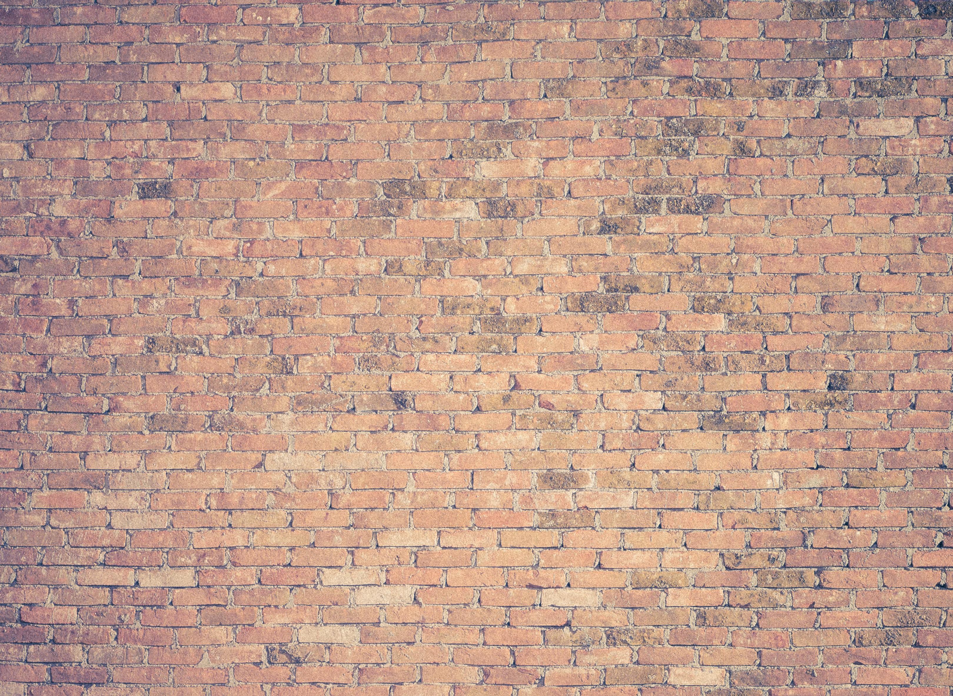 brown brick wall photography
