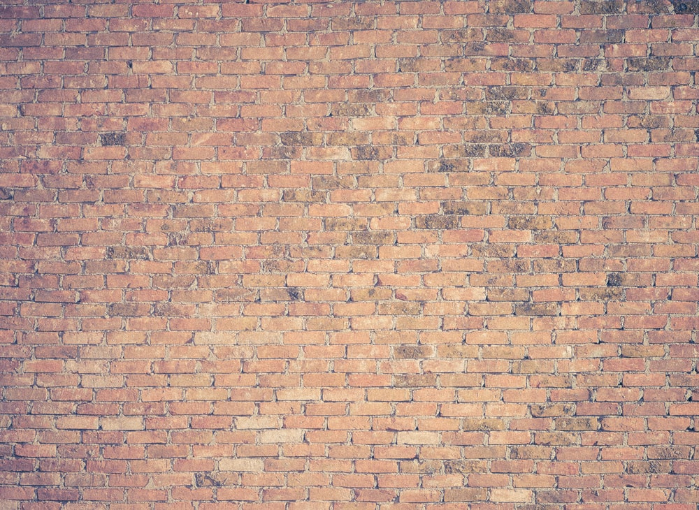 brown brick wall photography