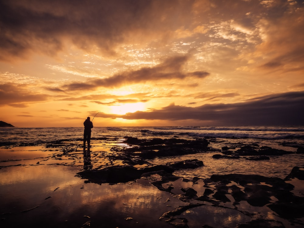 silhouette photo of man standing on beach during golden hour