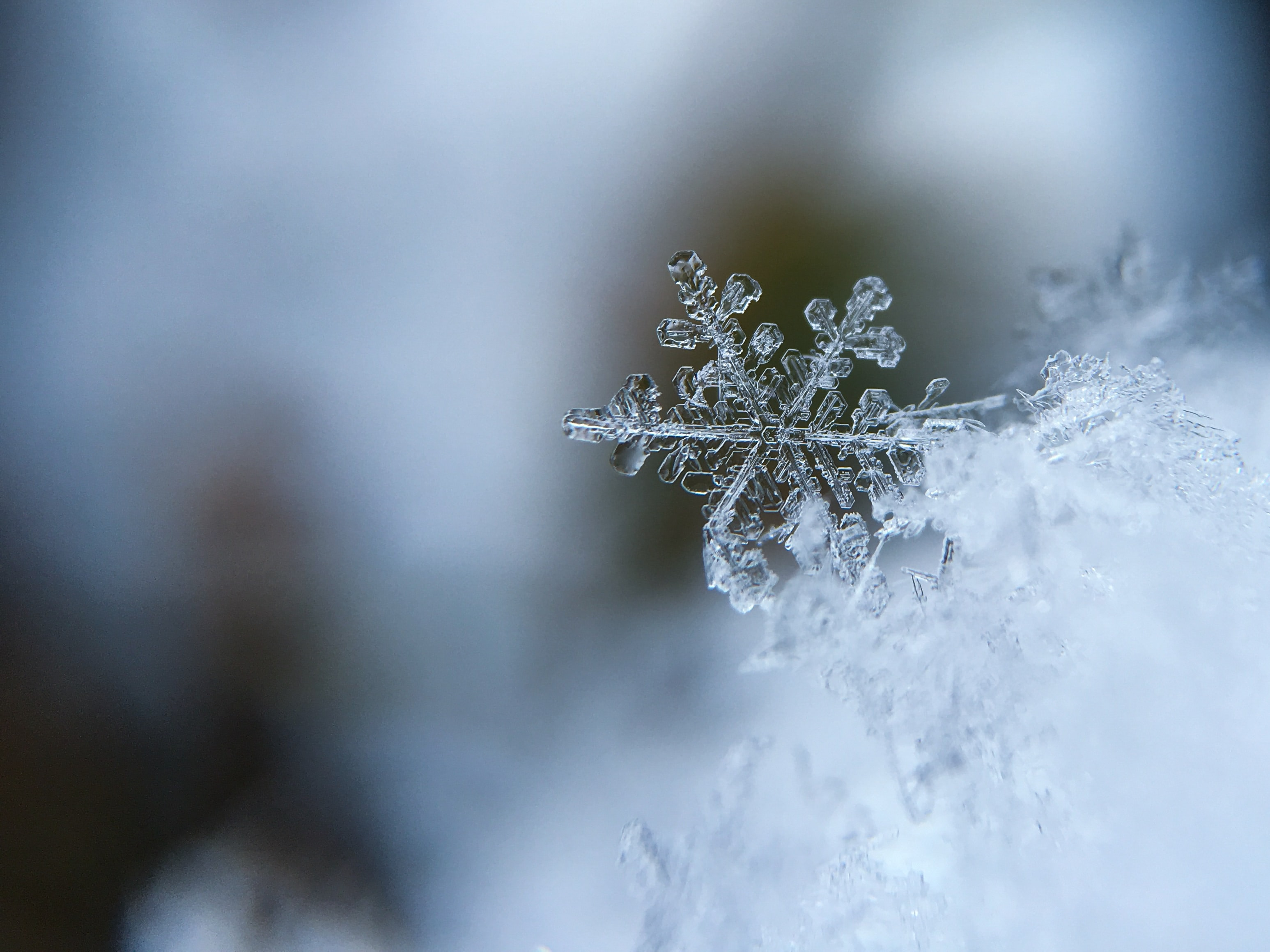 A macro shot of a ice crystal forming a snowflake