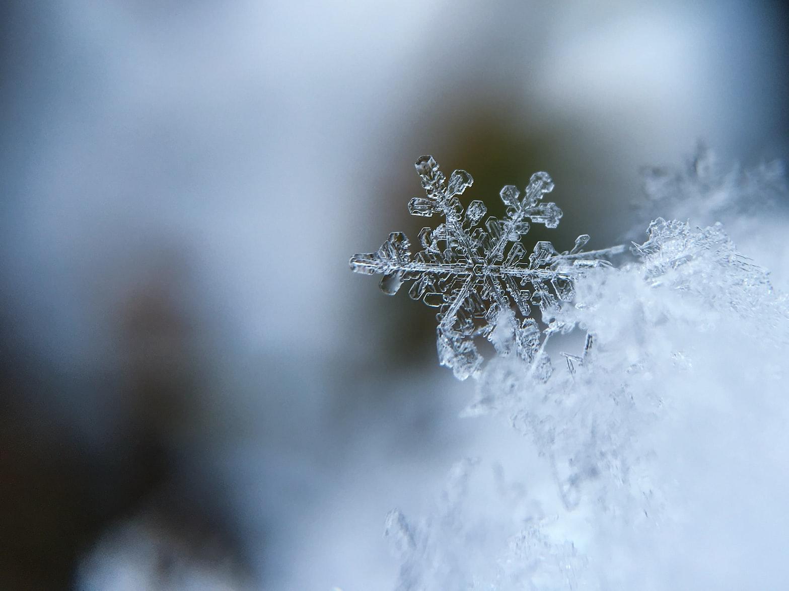 pqbhomes-winter