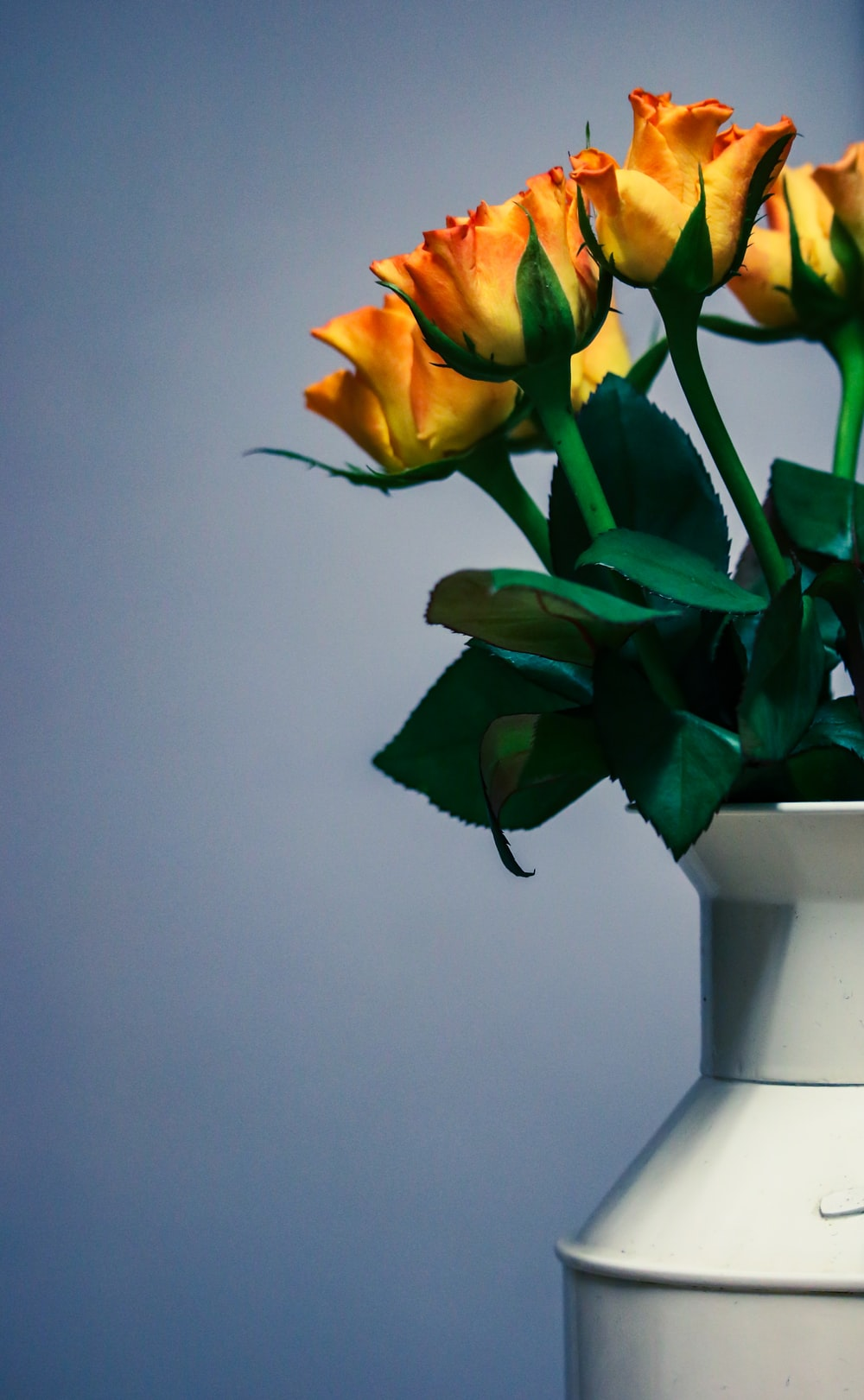 yellow, red, and green flowers on vase