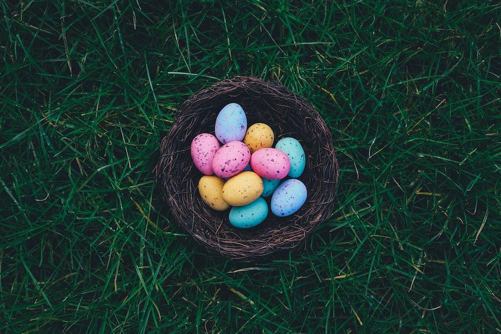 Easter Eggs on brown nest