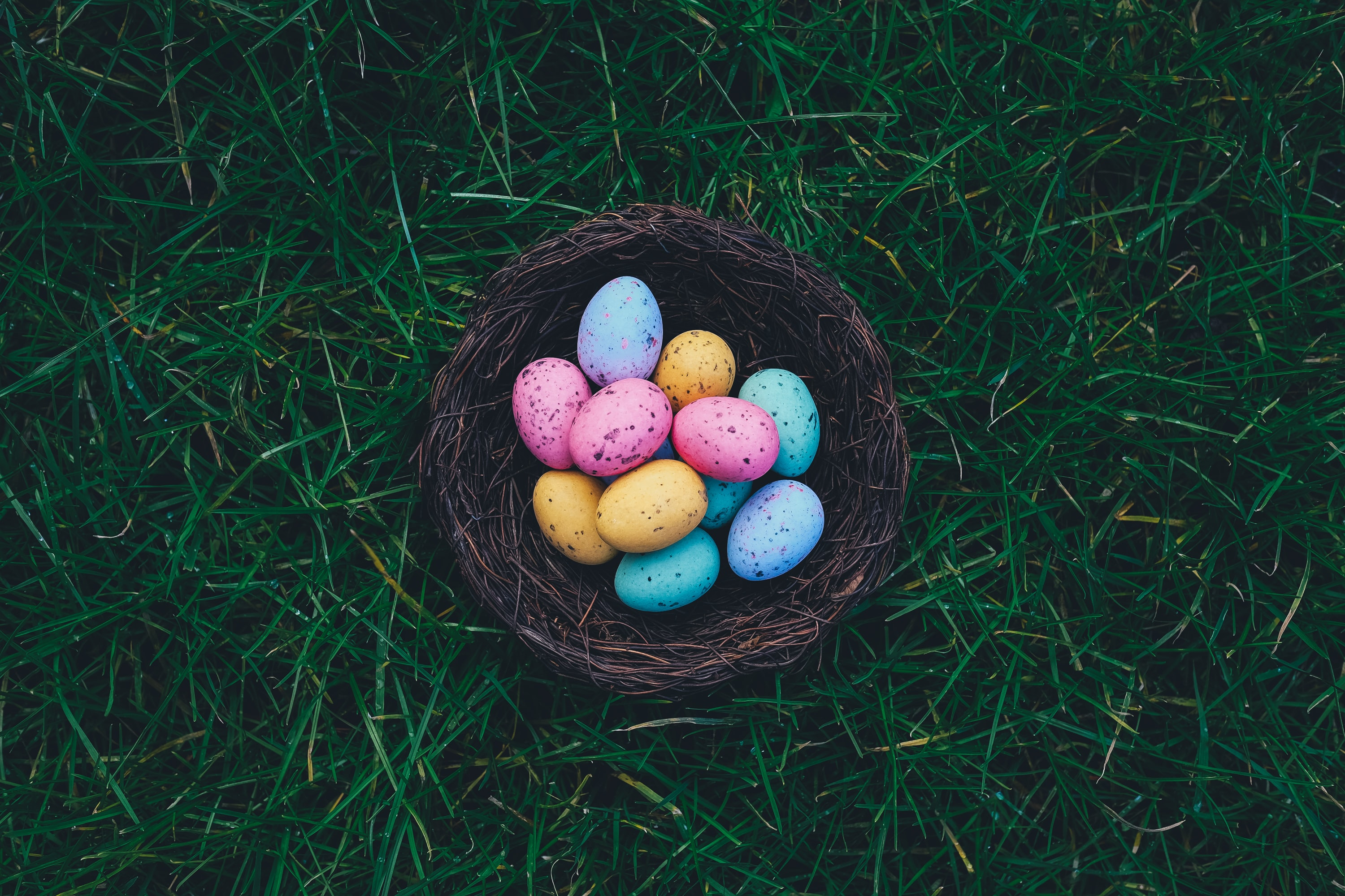 Multicolored speckled Easter eggs in a basket on grass