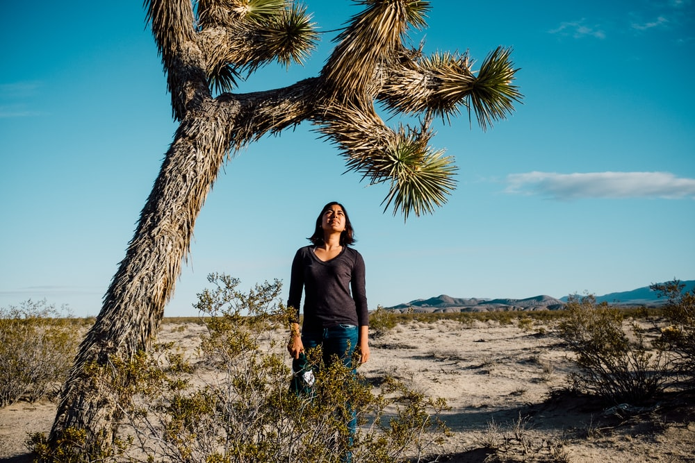 woman in black long sleeve shirt standing beside brown tree during daytime