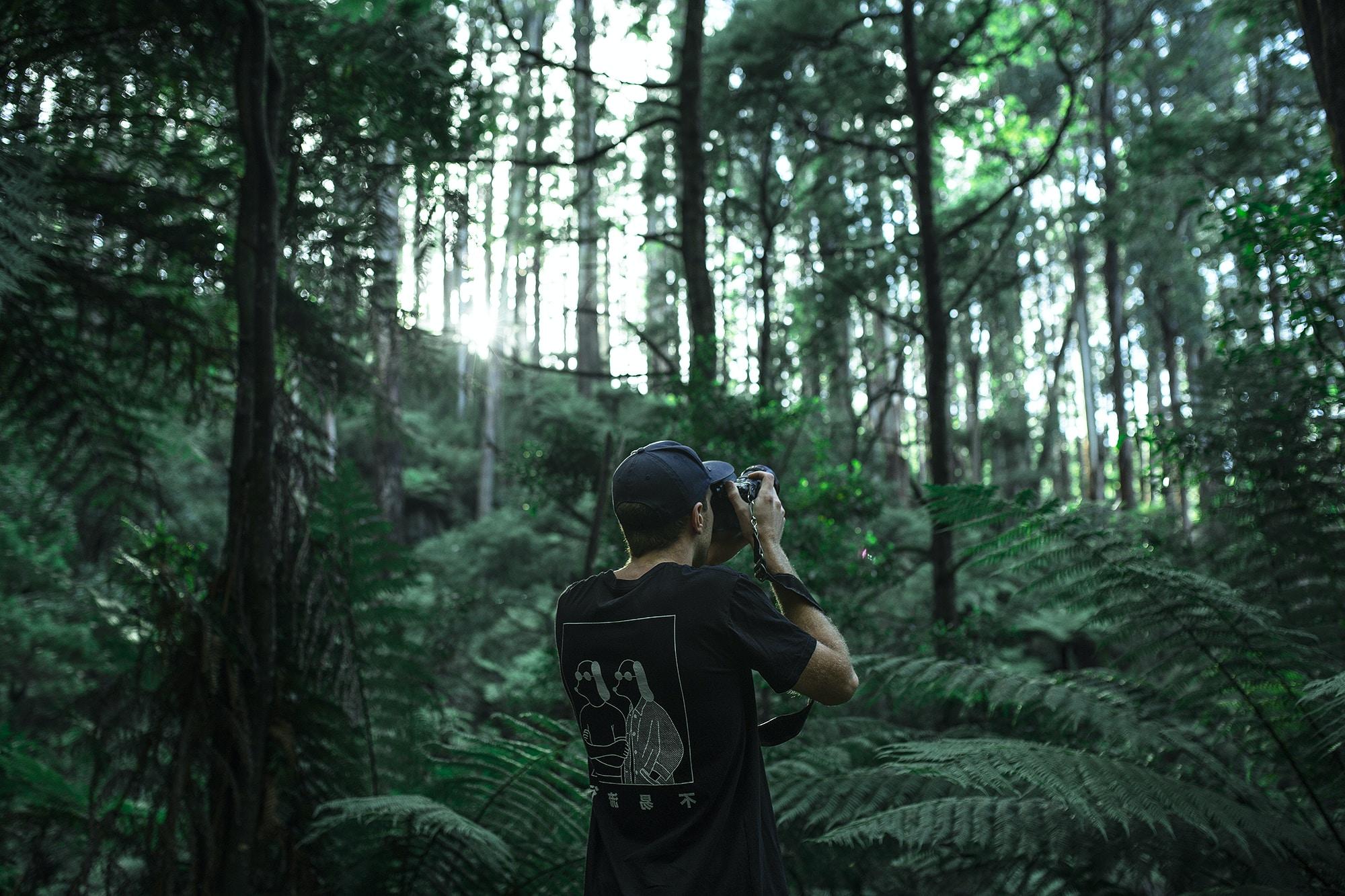 Mirrorless vs DSLR for landscape photography