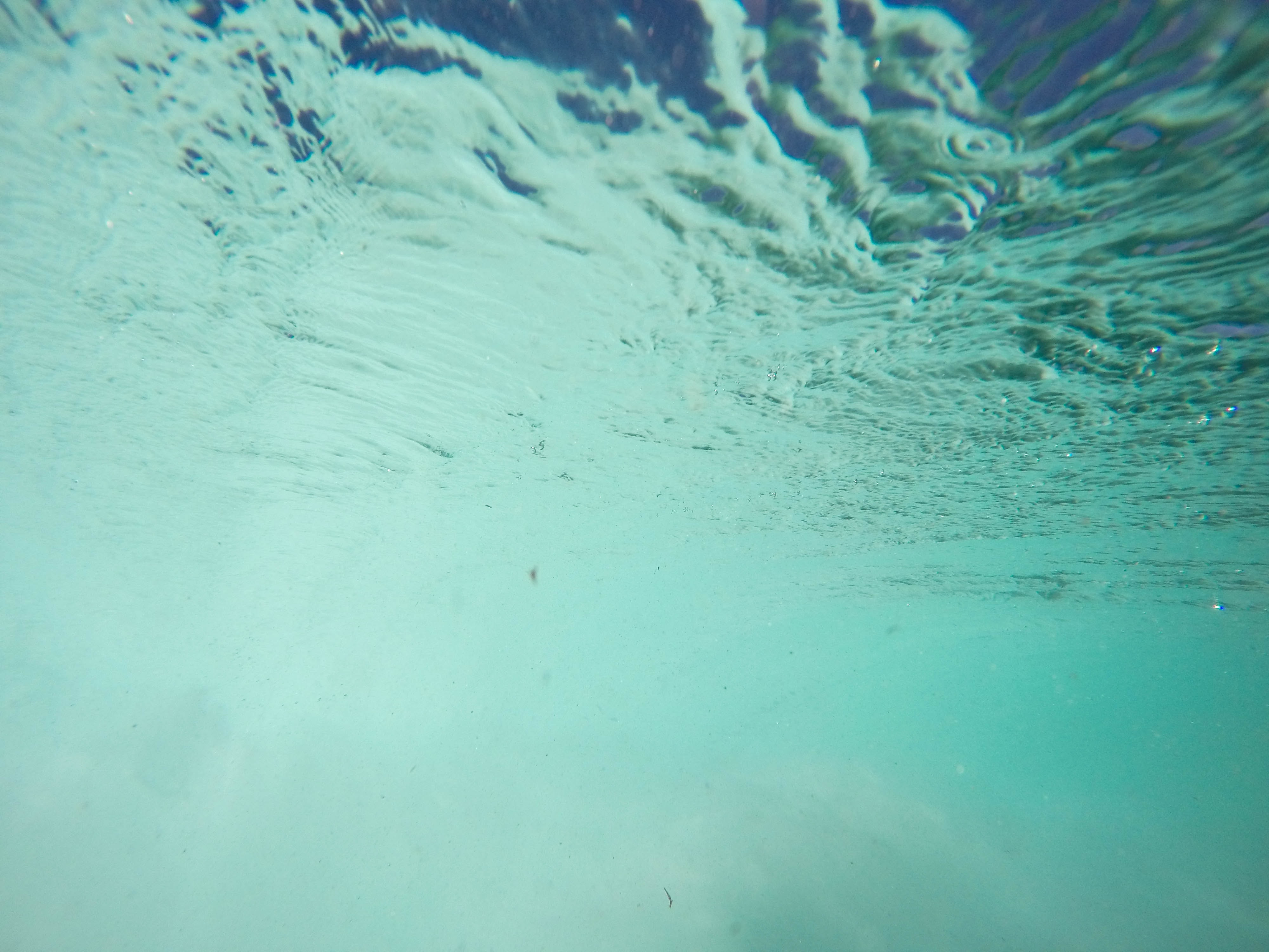 Submerged in water.