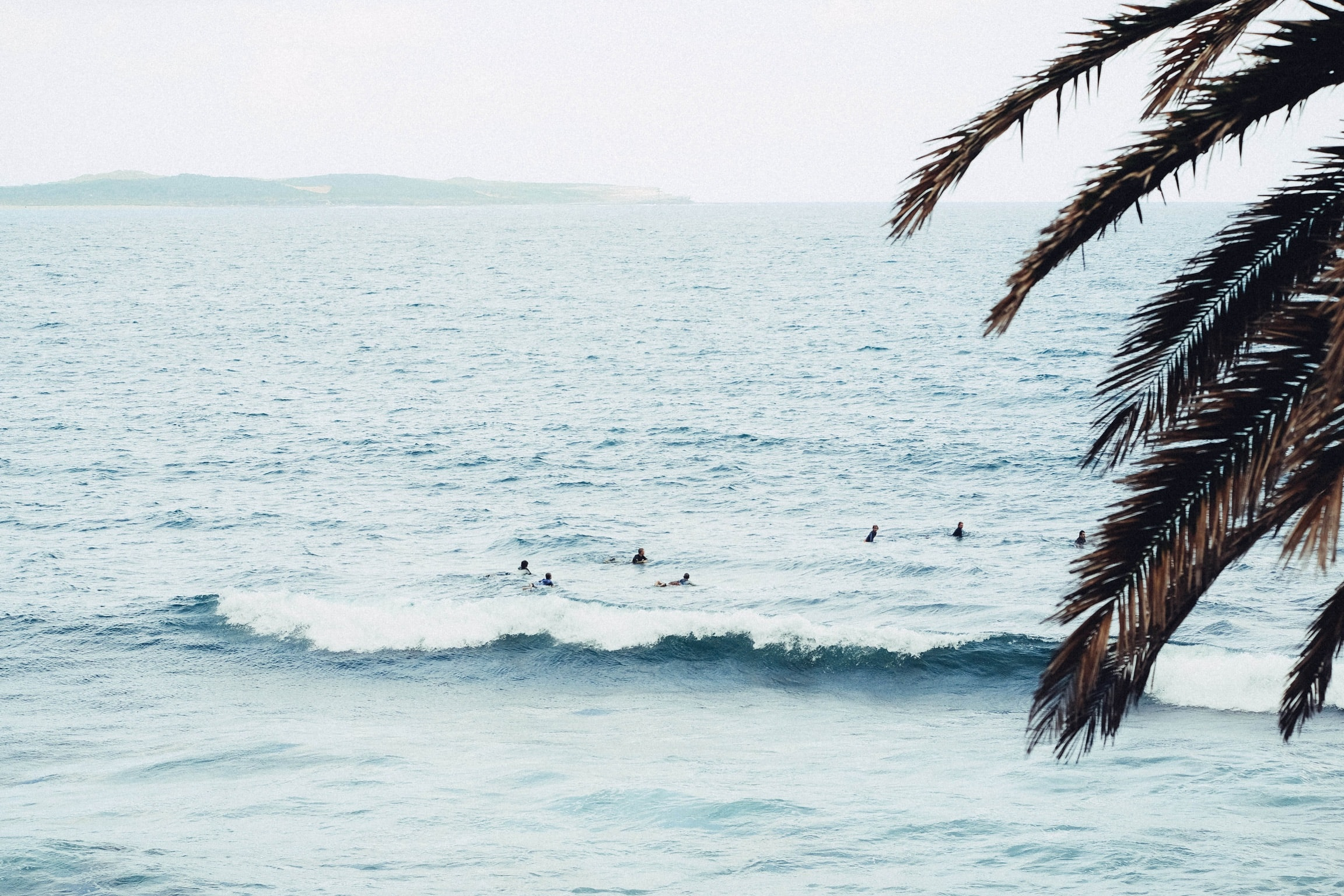 Surfers floating in the ocean at the beach in Australia