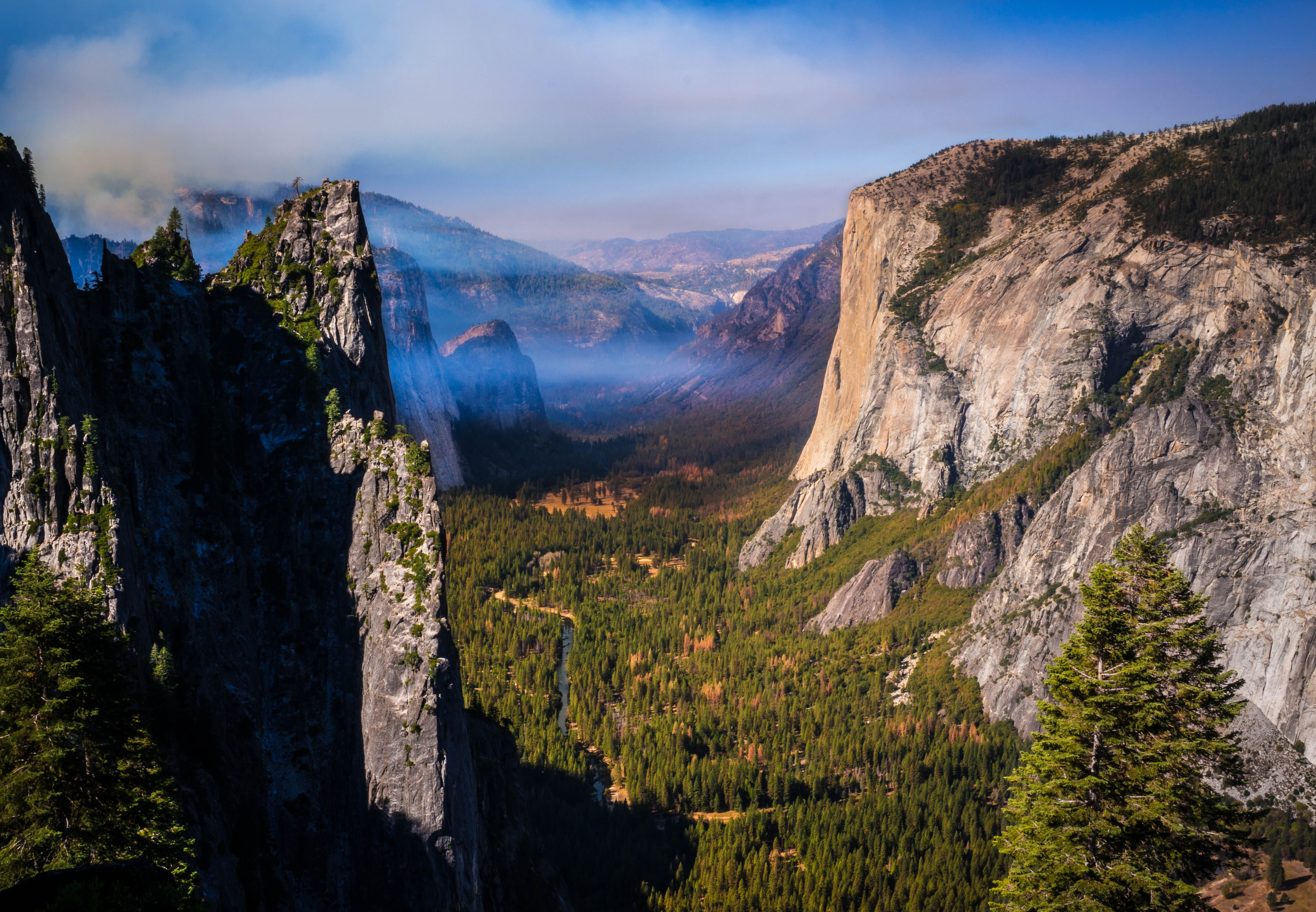 A high view of the high cliffs and the wooded bottom in Yosemite Valley