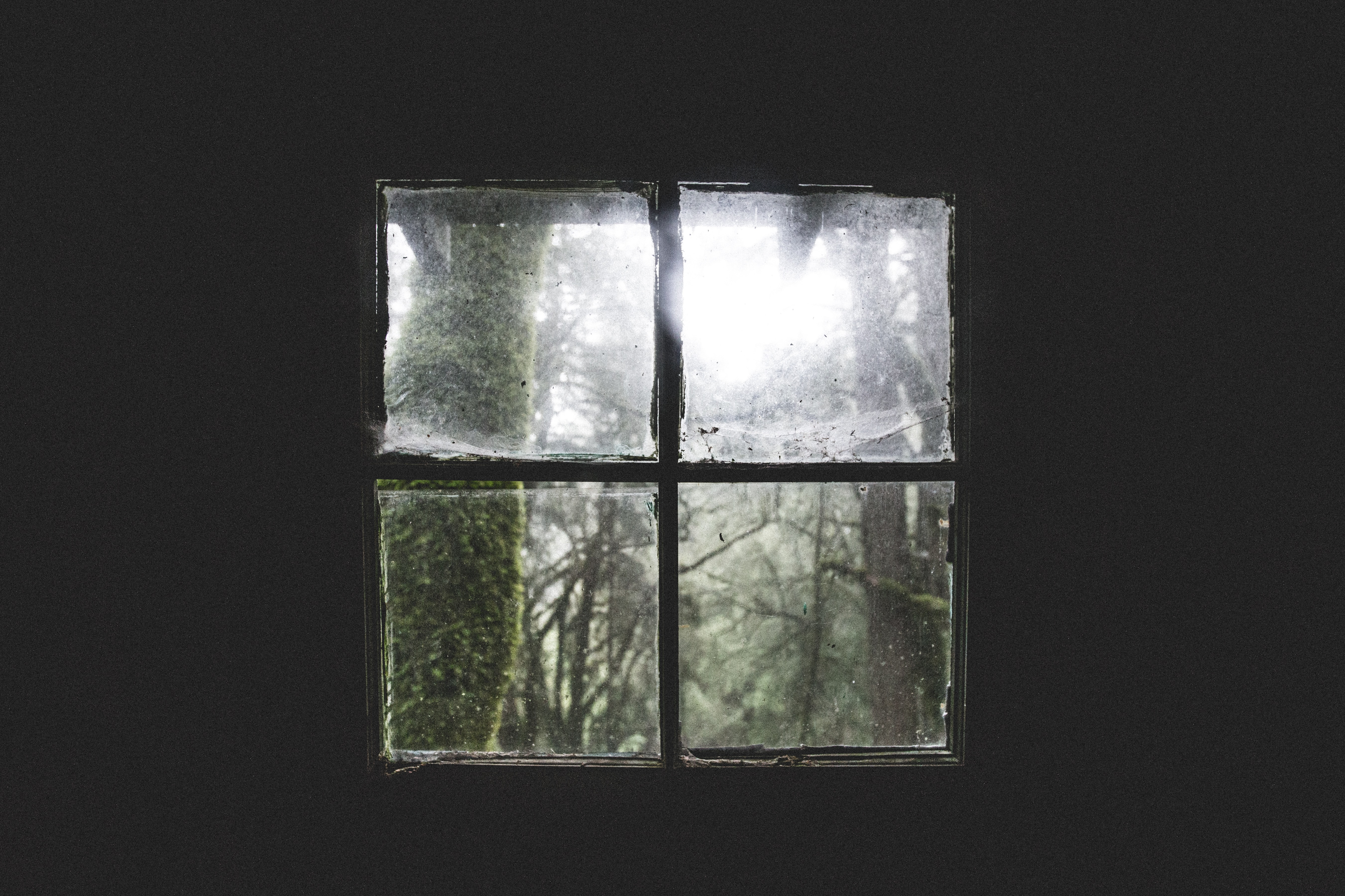 A small square window in a dark room with a view on mossy trees