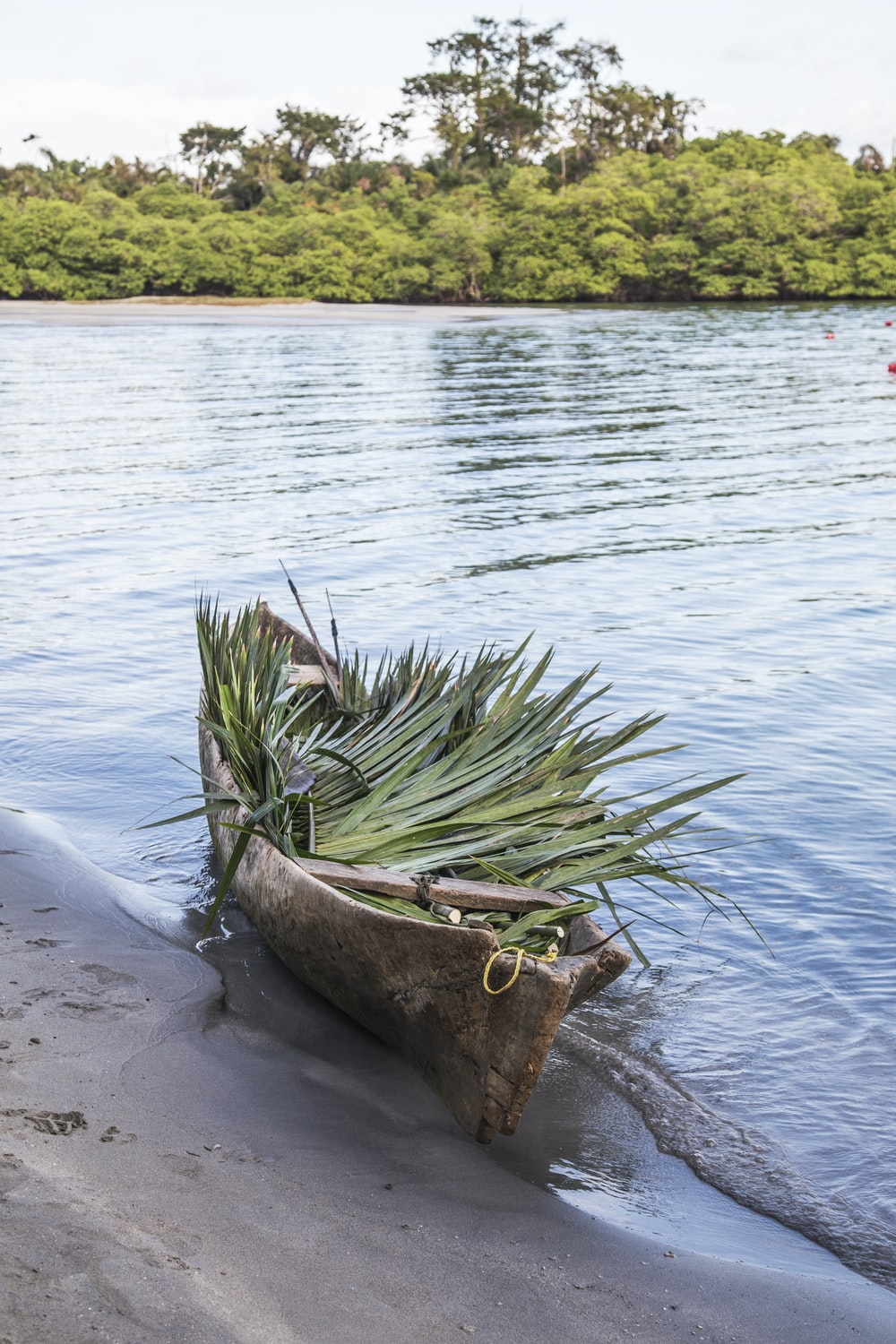 green and brown canoe on shore during daytime