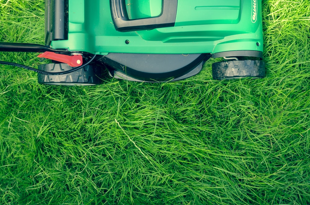 green and black lawnmower on green grass
