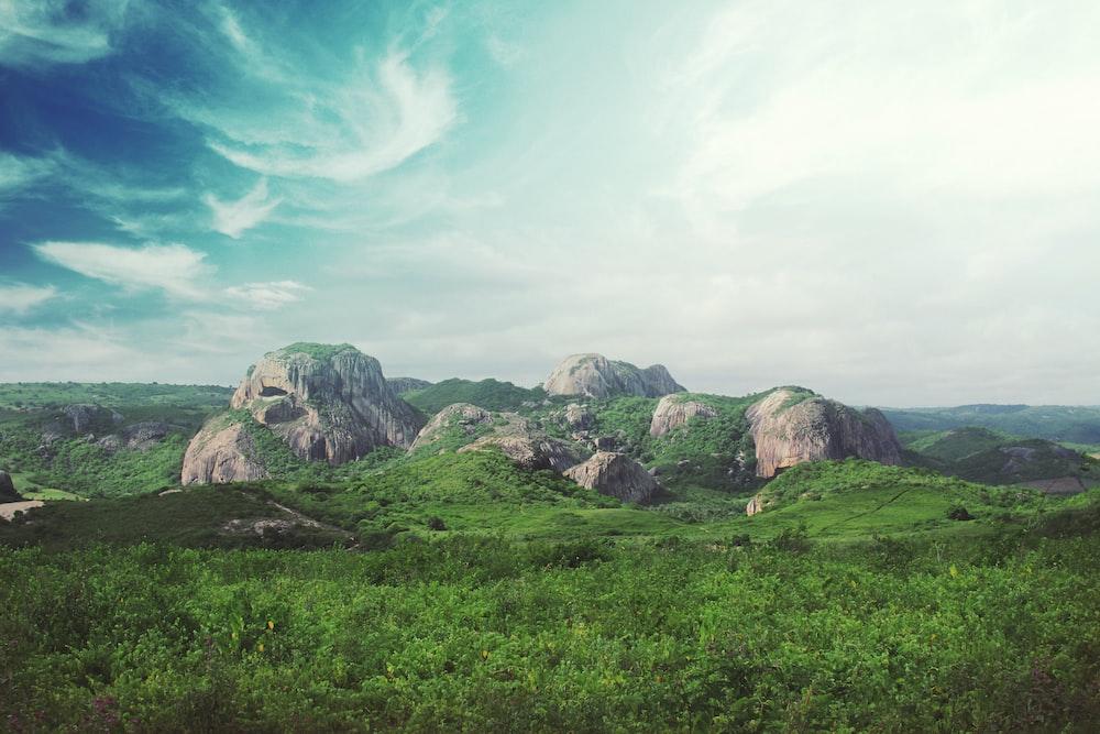 rocks surrounded by green field under blu sky